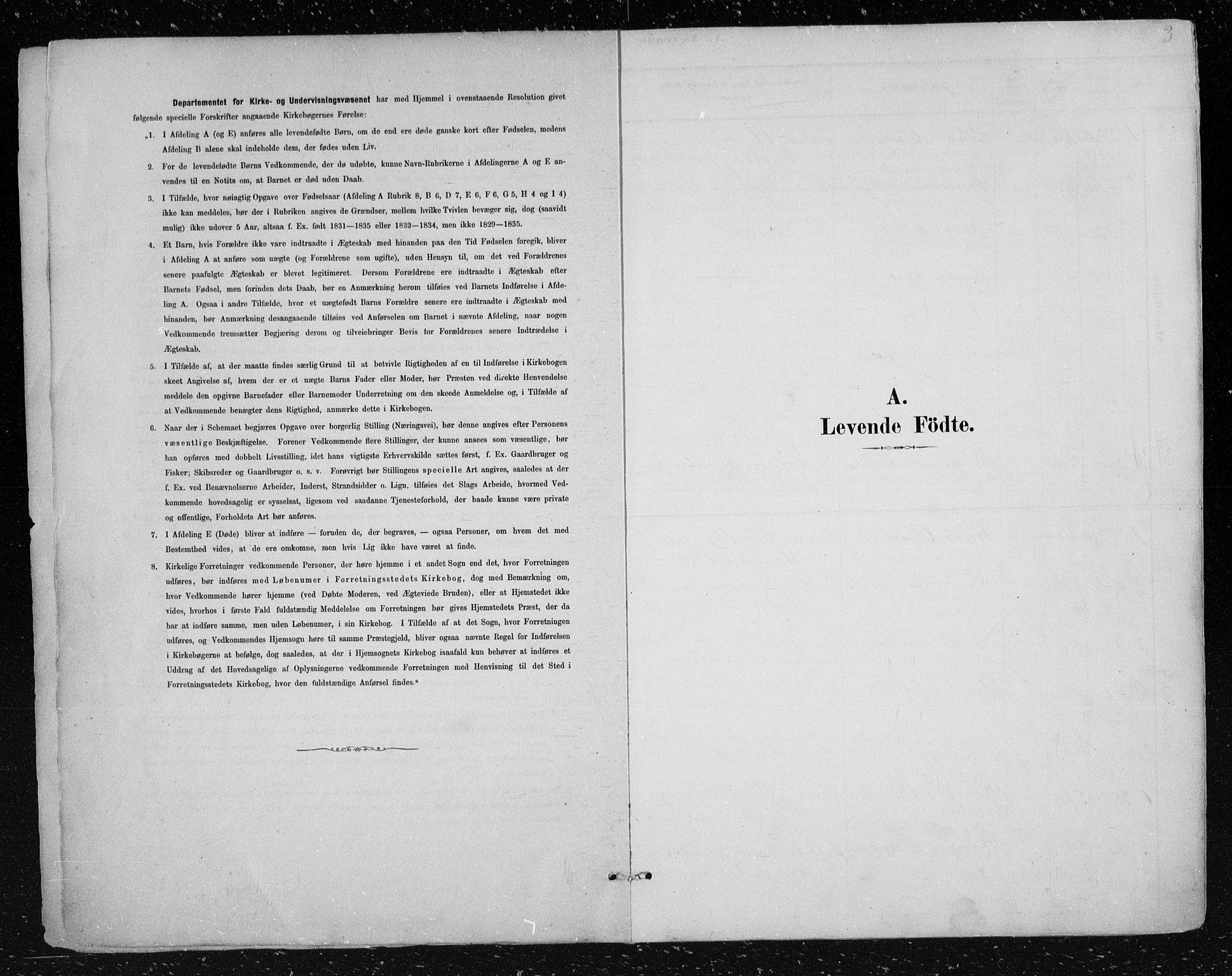 SAKO, Nes kirkebøker, F/Fa/L0012: Ministerialbok nr. 12, 1881-1917, s. 3