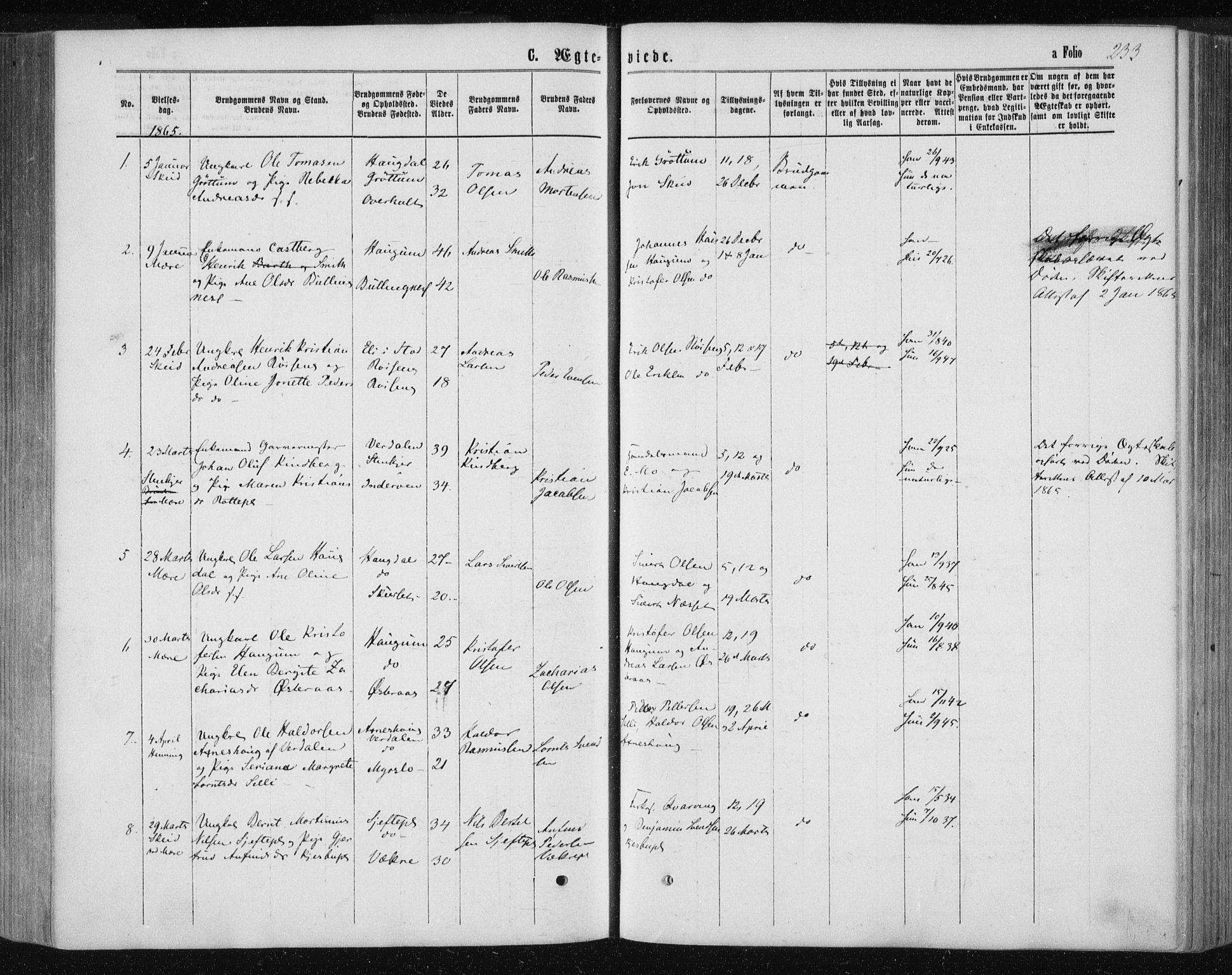 SAT, Ministerialprotokoller, klokkerbøker og fødselsregistre - Nord-Trøndelag, 735/L0345: Ministerialbok nr. 735A08 /1, 1863-1872, s. 233