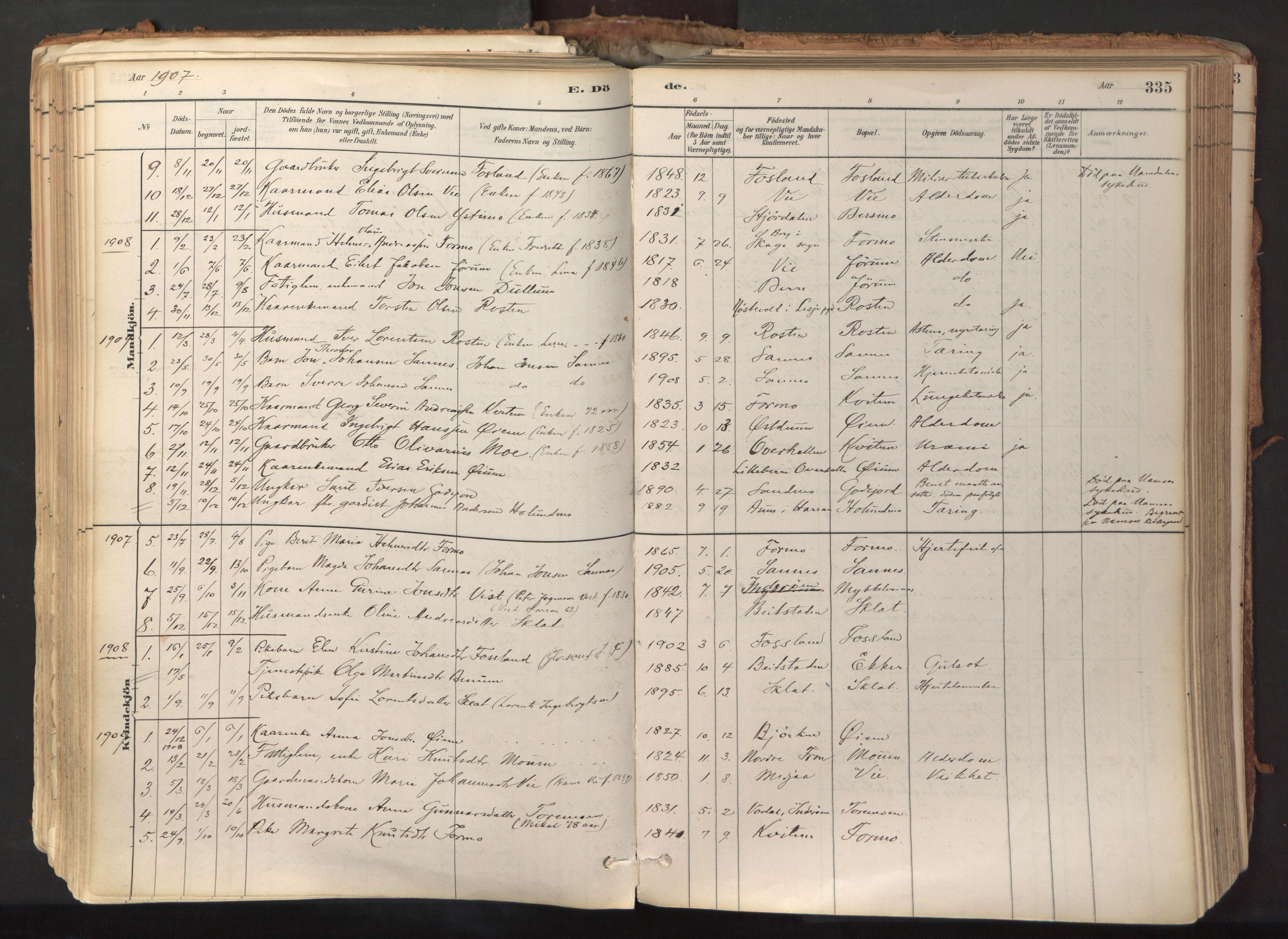 SAT, Ministerialprotokoller, klokkerbøker og fødselsregistre - Nord-Trøndelag, 758/L0519: Ministerialbok nr. 758A04, 1880-1926, s. 335