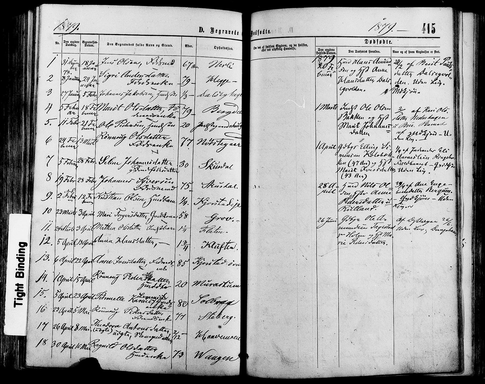 SAH, Sør-Fron prestekontor, H/Ha/Haa/L0002: Ministerialbok nr. 2, 1864-1880, s. 415