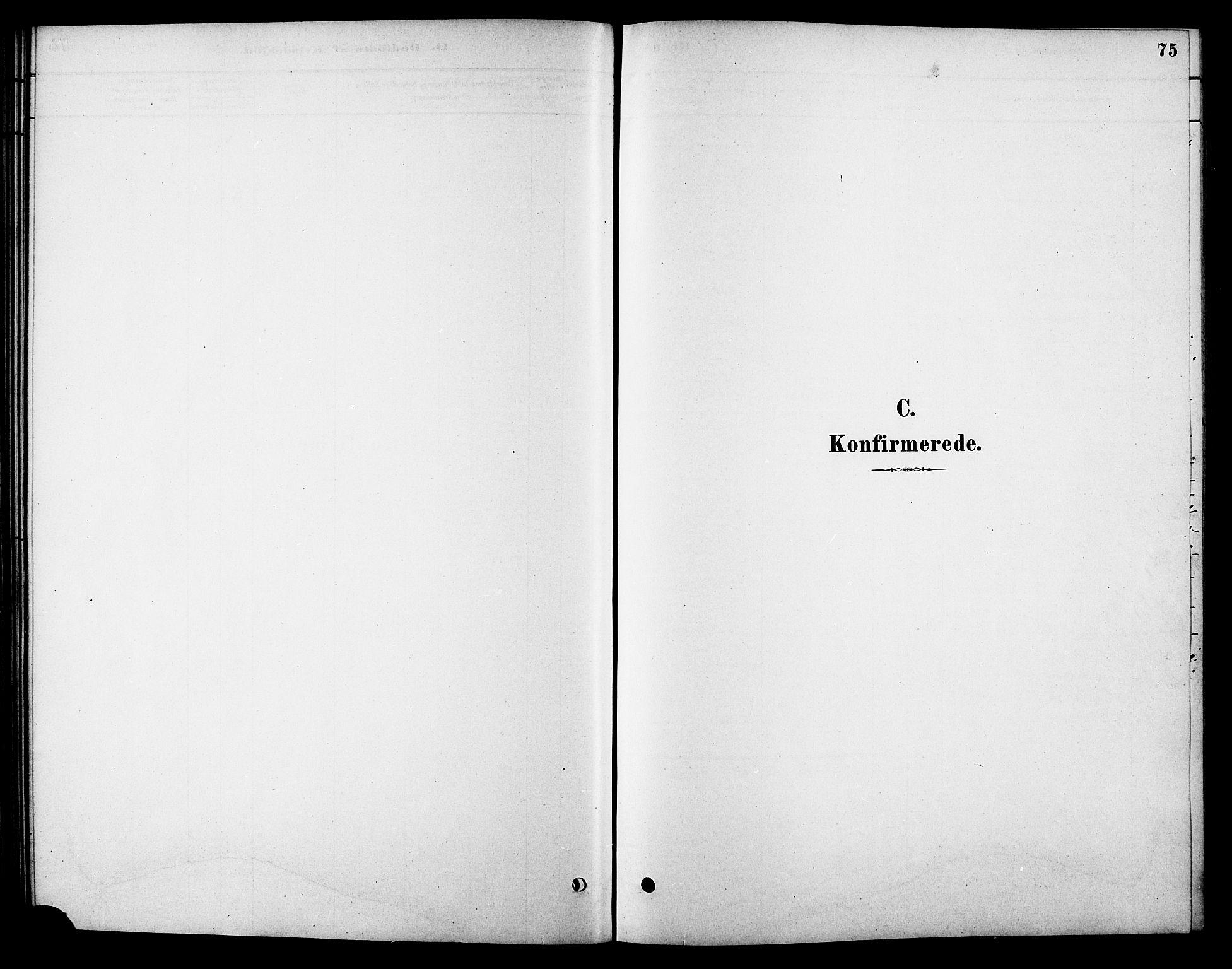 SAT, Ministerialprotokoller, klokkerbøker og fødselsregistre - Sør-Trøndelag, 688/L1024: Ministerialbok nr. 688A01, 1879-1890, s. 75