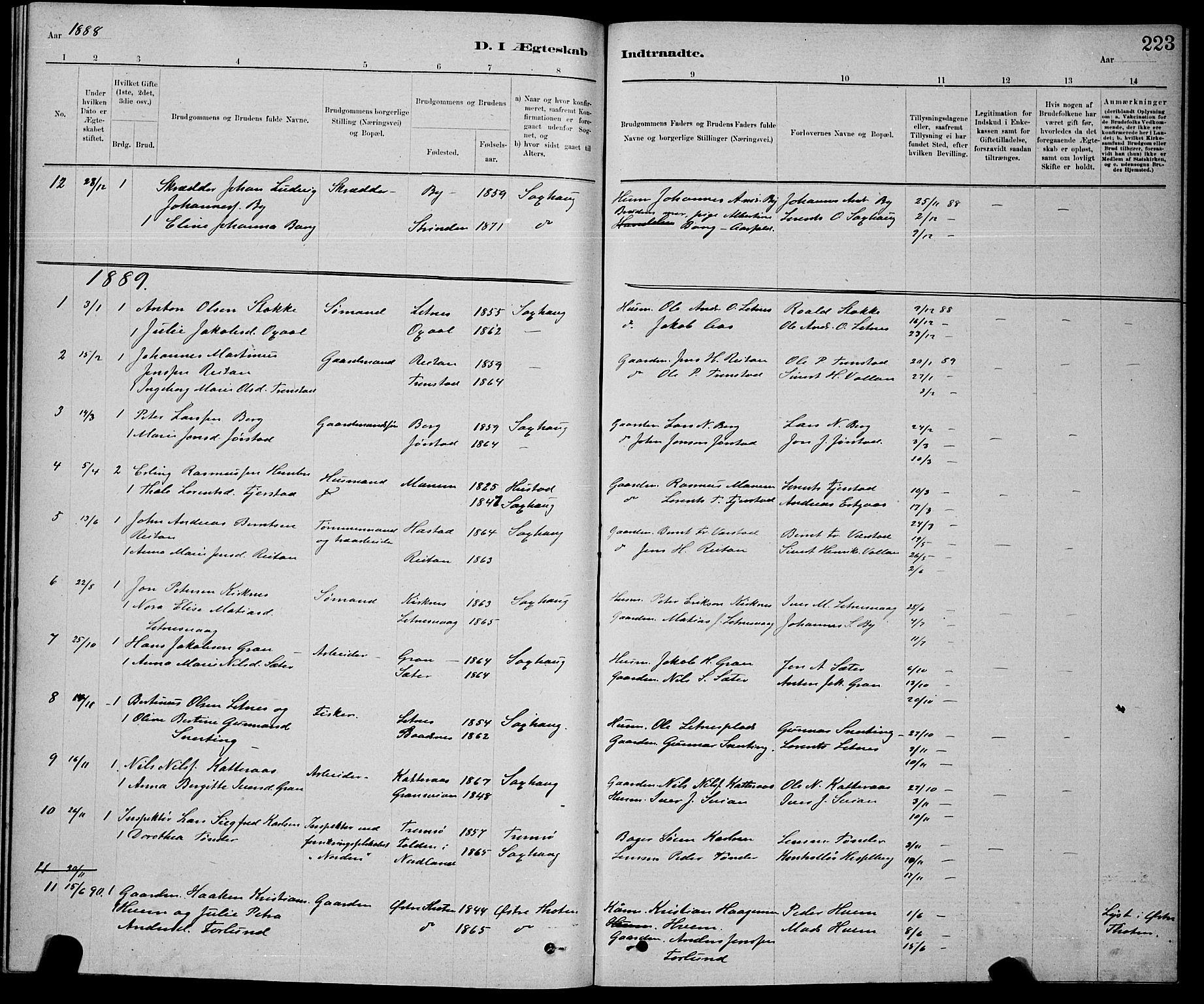 SAT, Ministerialprotokoller, klokkerbøker og fødselsregistre - Nord-Trøndelag, 730/L0301: Klokkerbok nr. 730C04, 1880-1897, s. 223
