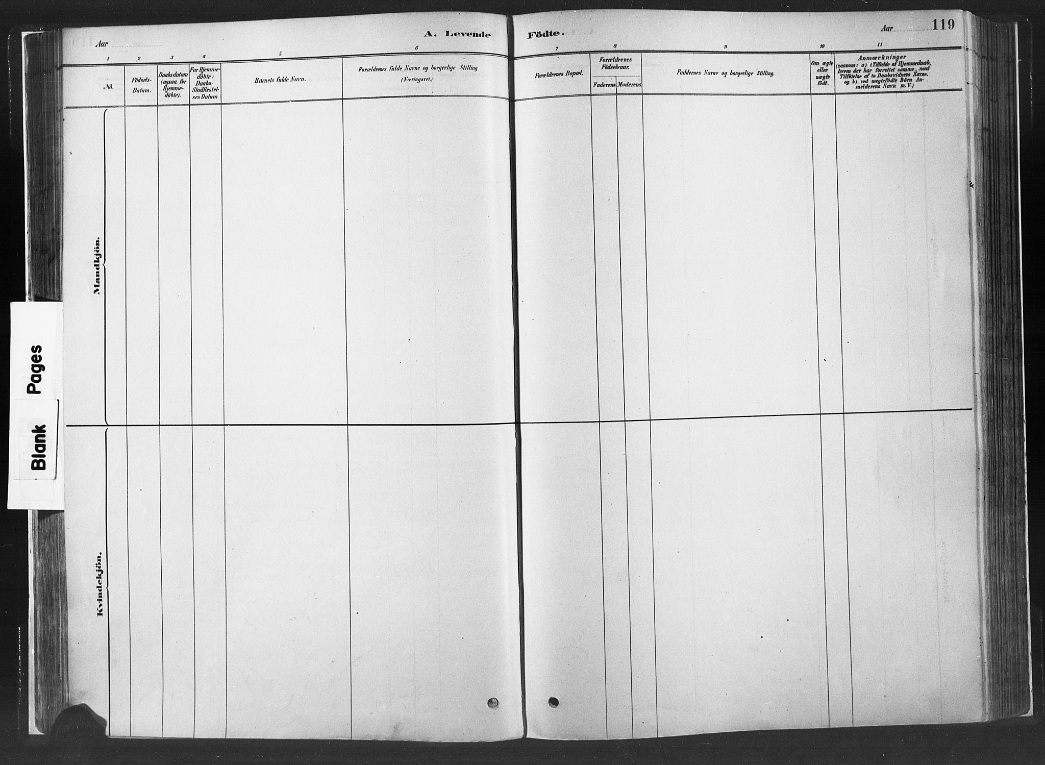 SAH, Fåberg prestekontor, H/Ha/Haa/L0010: Ministerialbok nr. 10, 1879-1900, s. 119