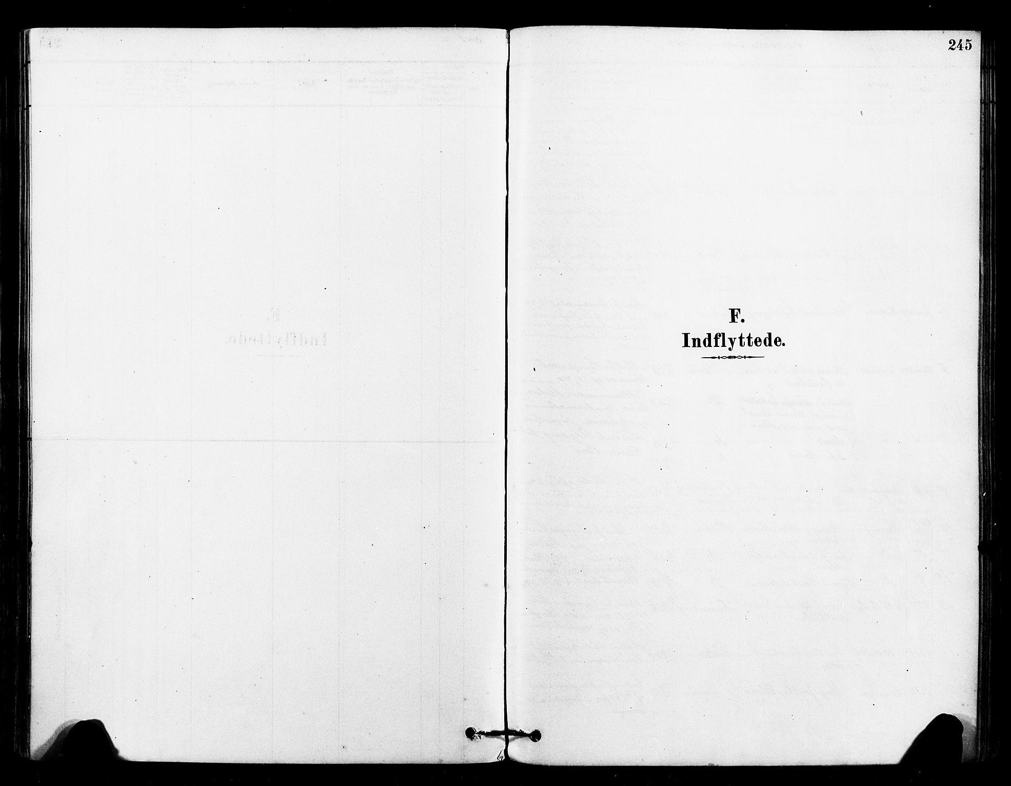 SAT, Ministerialprotokoller, klokkerbøker og fødselsregistre - Sør-Trøndelag, 640/L0578: Ministerialbok nr. 640A03, 1879-1889, s. 245