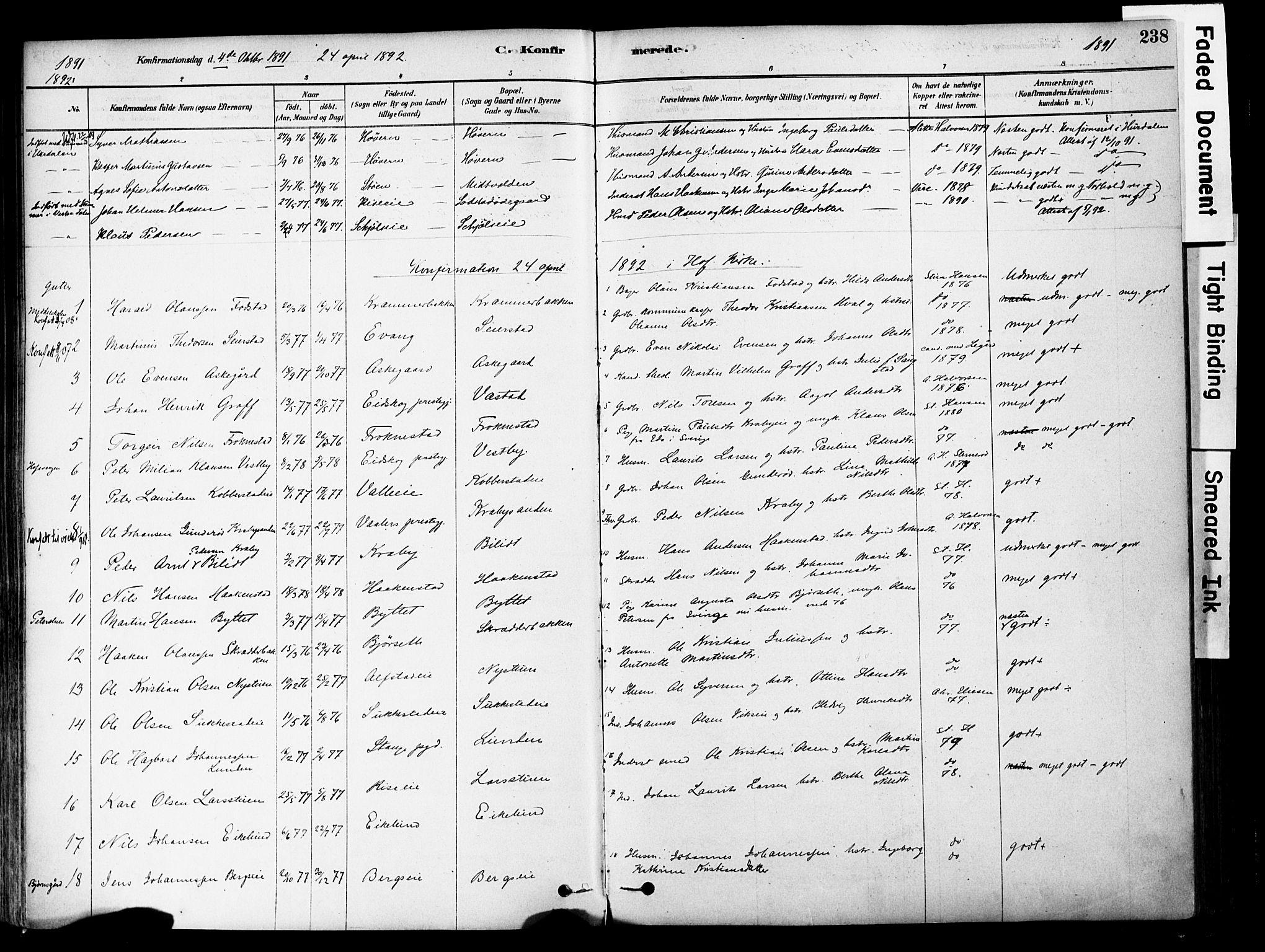SAH, Østre Toten prestekontor, Ministerialbok nr. 6 /1, 1878-1896, s. 238