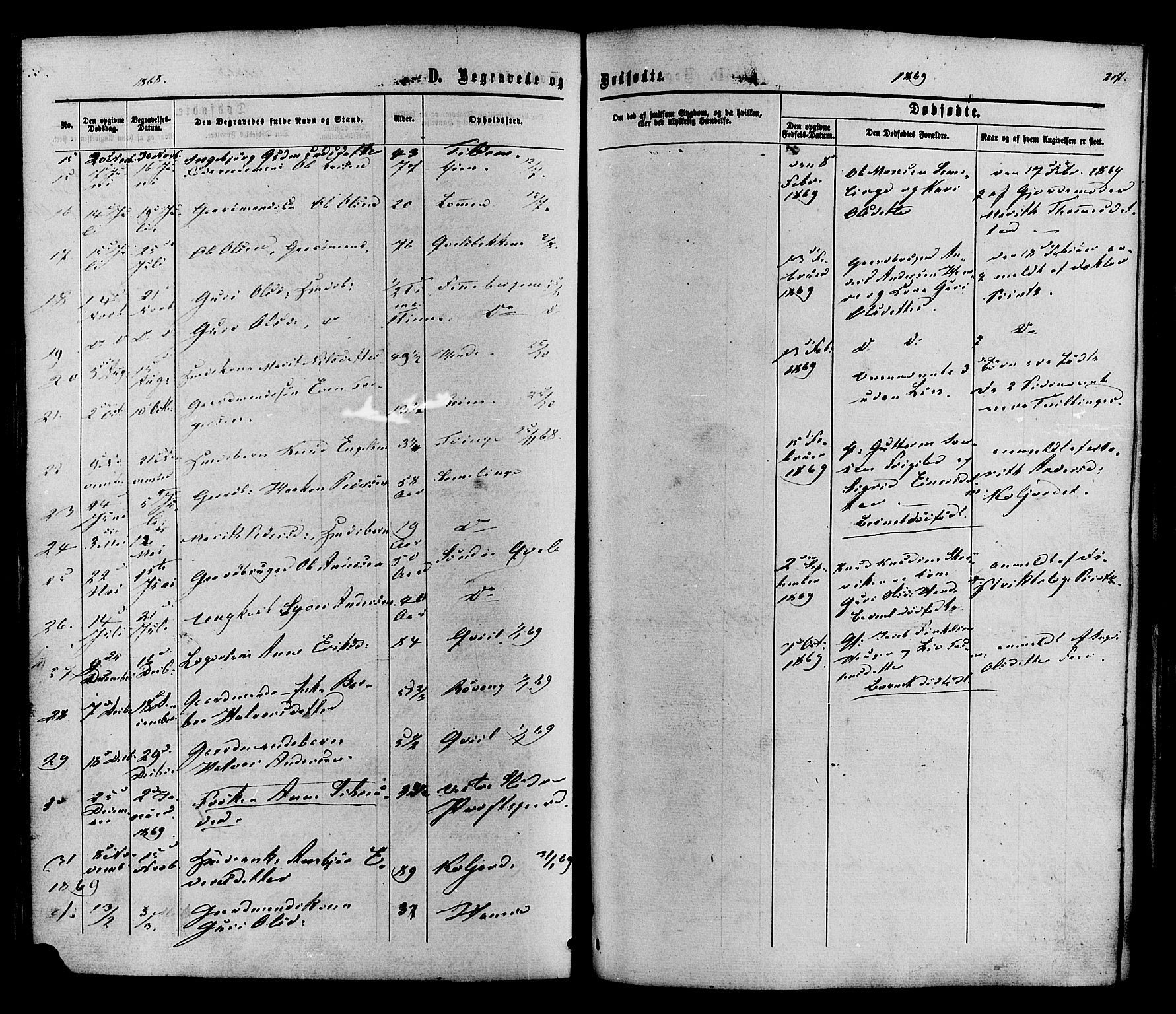 SAH, Vestre Slidre prestekontor, Ministerialbok nr. 3, 1865-1880, s. 217