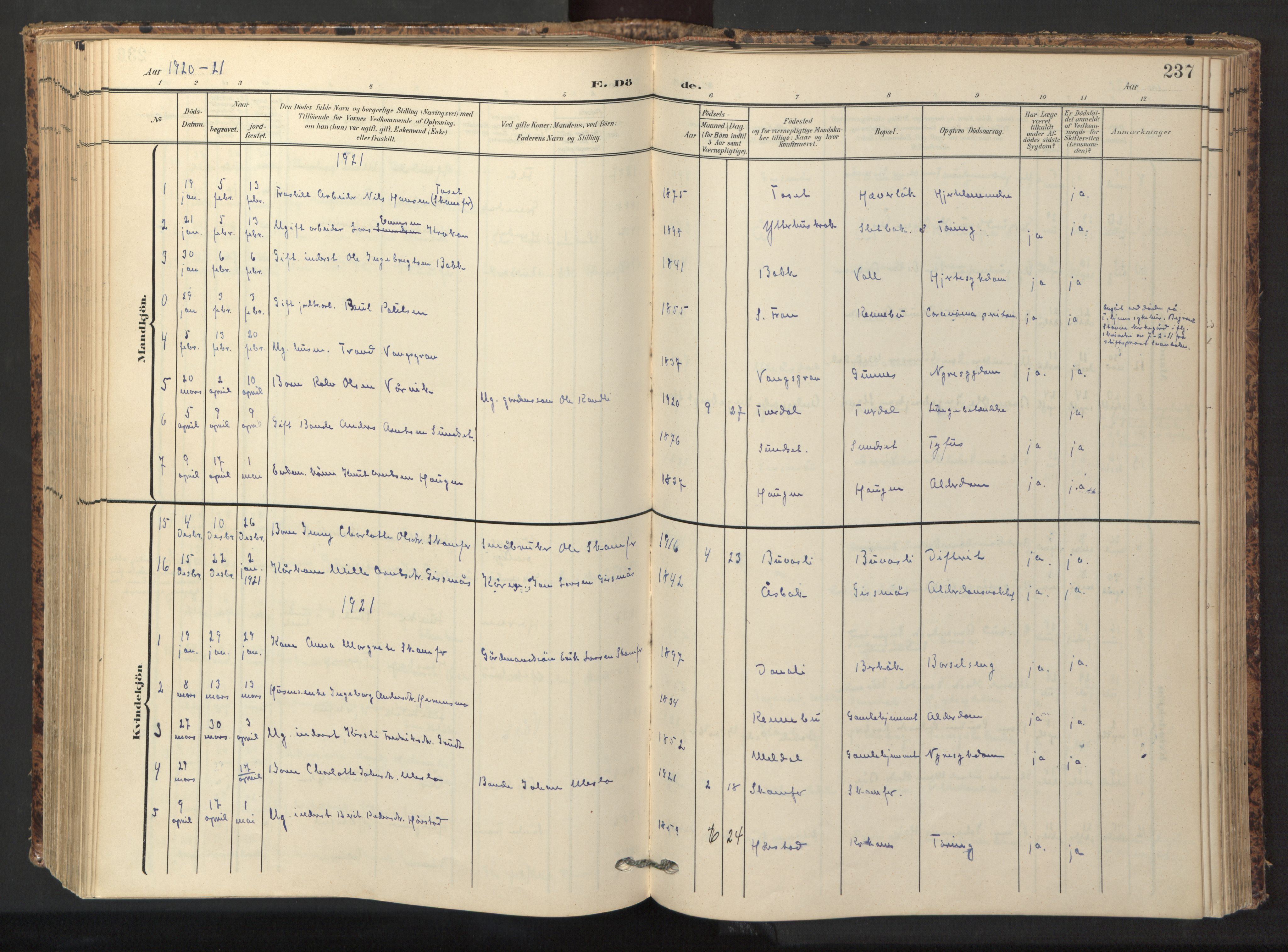 SAT, Ministerialprotokoller, klokkerbøker og fødselsregistre - Sør-Trøndelag, 674/L0873: Ministerialbok nr. 674A05, 1908-1923, s. 237