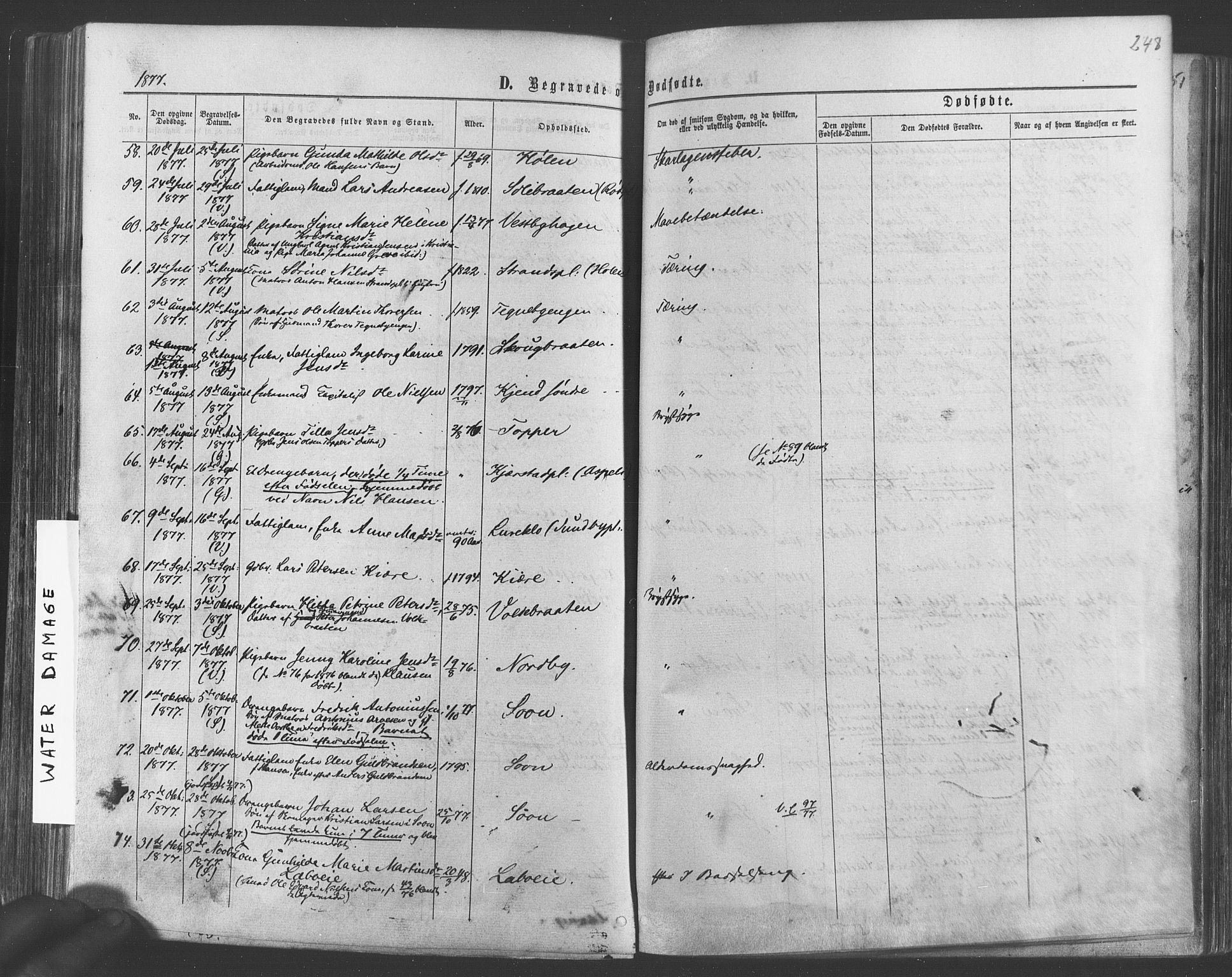 SAO, Vestby prestekontor Kirkebøker, F/Fa/L0008: Ministerialbok nr. I 8, 1863-1877, s. 248