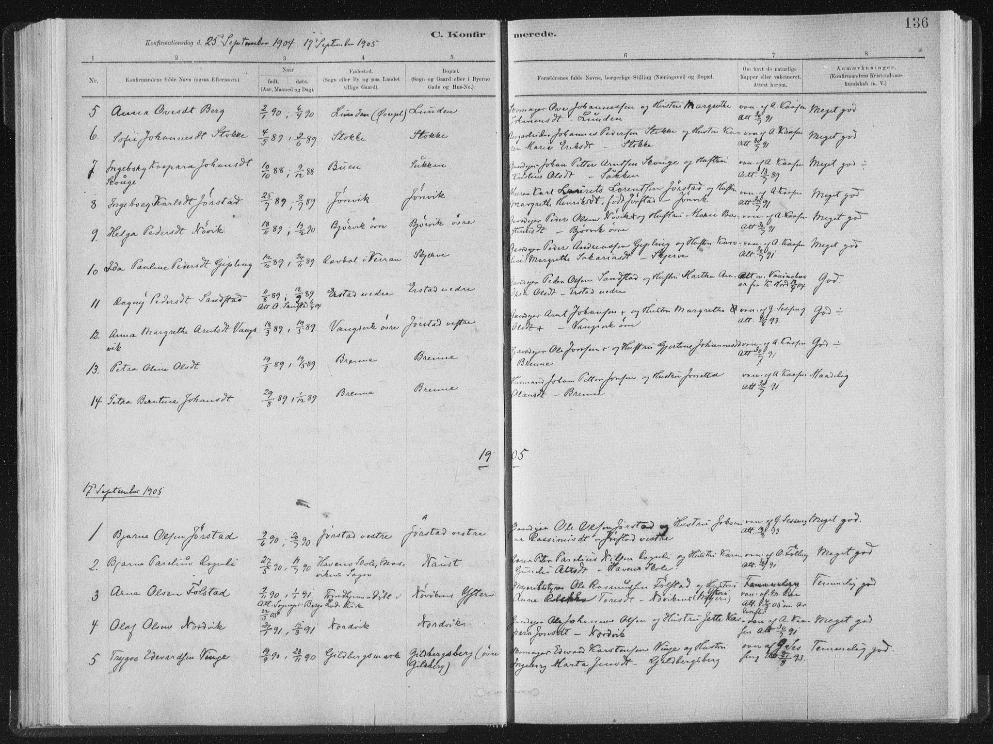 SAT, Ministerialprotokoller, klokkerbøker og fødselsregistre - Nord-Trøndelag, 722/L0220: Ministerialbok nr. 722A07, 1881-1908, s. 136