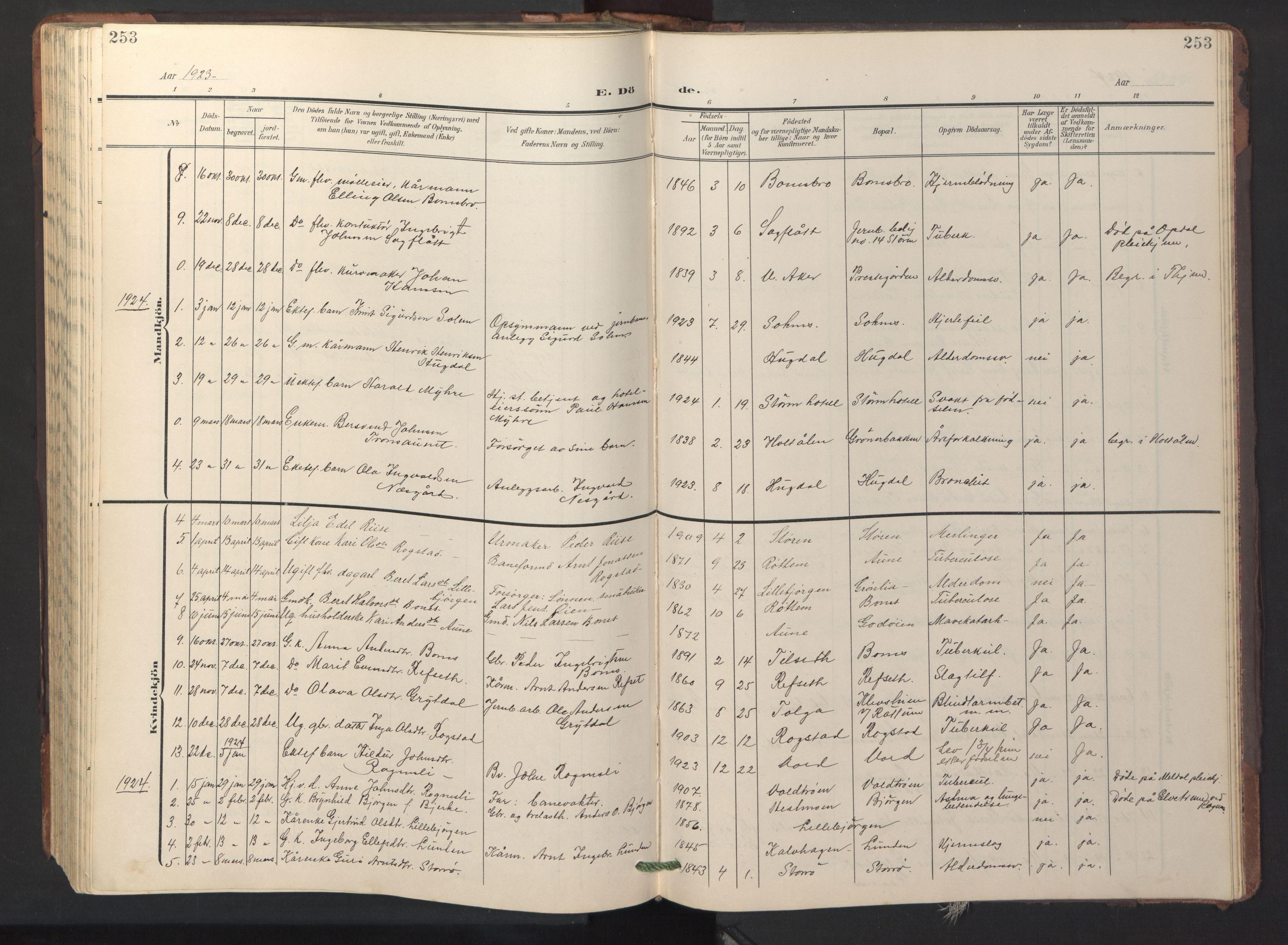 SAT, Ministerialprotokoller, klokkerbøker og fødselsregistre - Sør-Trøndelag, 687/L1019: Klokkerbok nr. 687C03, 1904-1931, s. 253