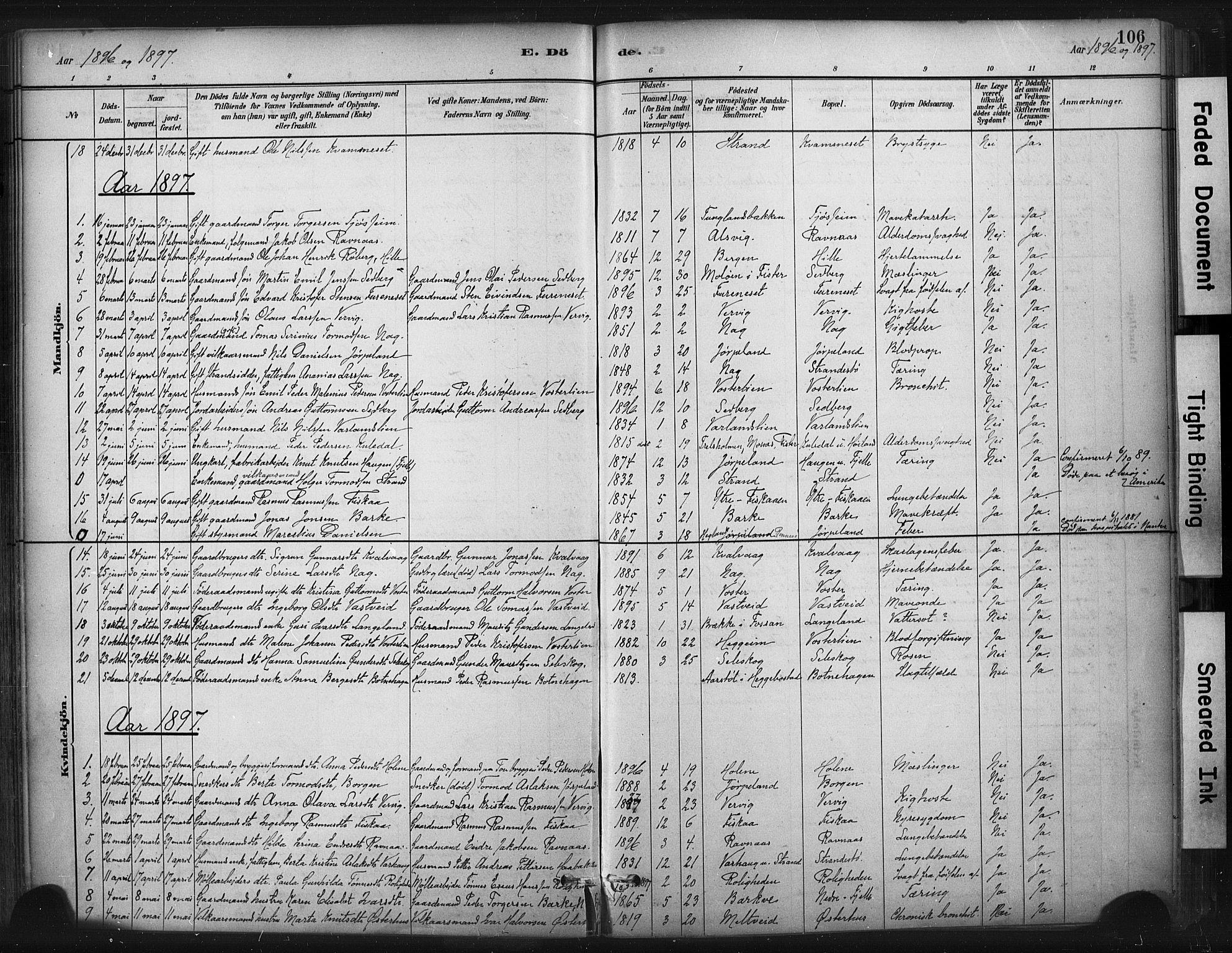 SAST, Strand sokneprestkontor, H/Ha/Haa/L0010: Ministerialbok nr. A 10, 1882-1929, s. 106