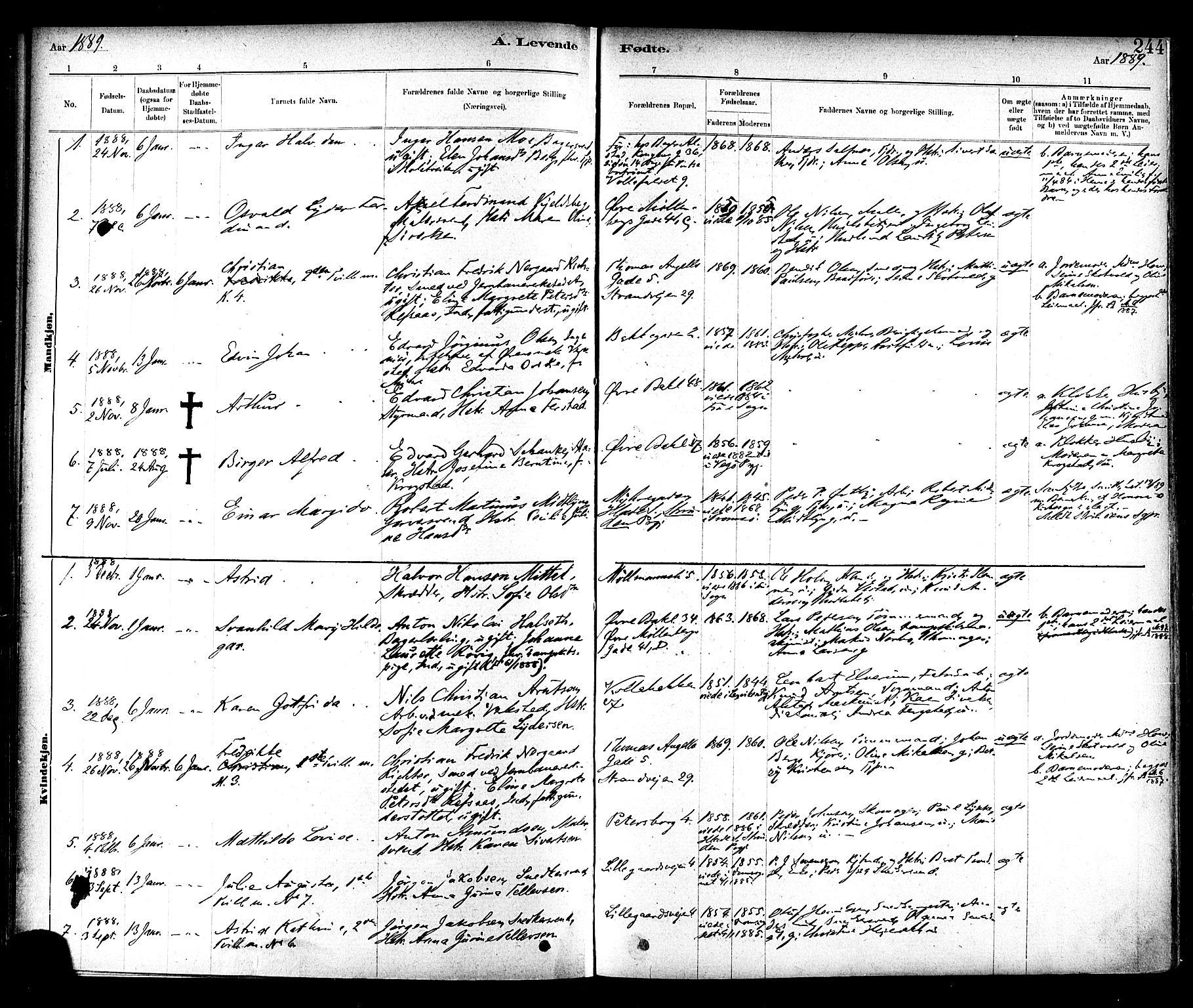 SAT, Ministerialprotokoller, klokkerbøker og fødselsregistre - Sør-Trøndelag, 604/L0188: Ministerialbok nr. 604A09, 1878-1892, s. 244