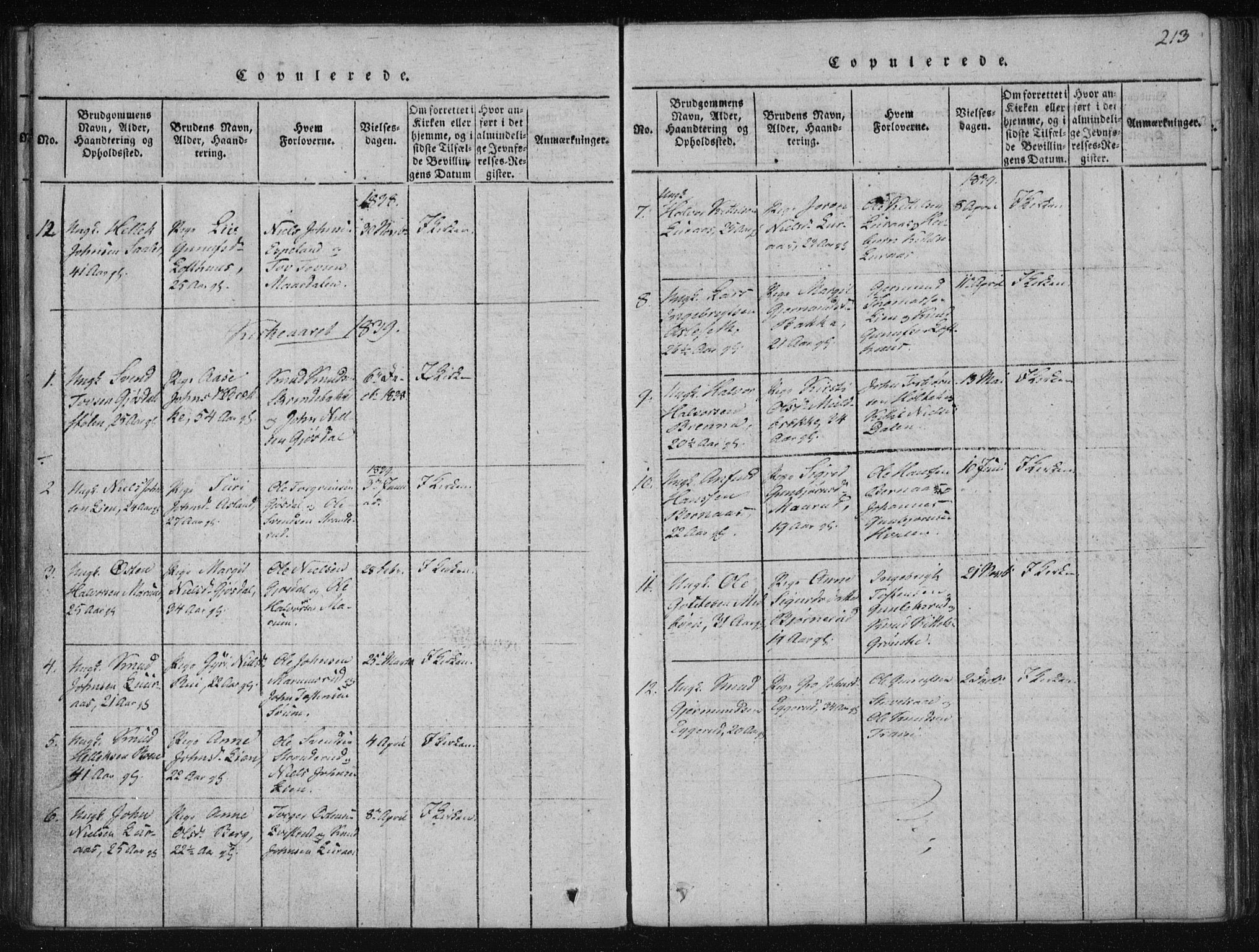 SAKO, Tinn kirkebøker, F/Fa/L0004: Ministerialbok nr. I 4, 1815-1843, s. 213