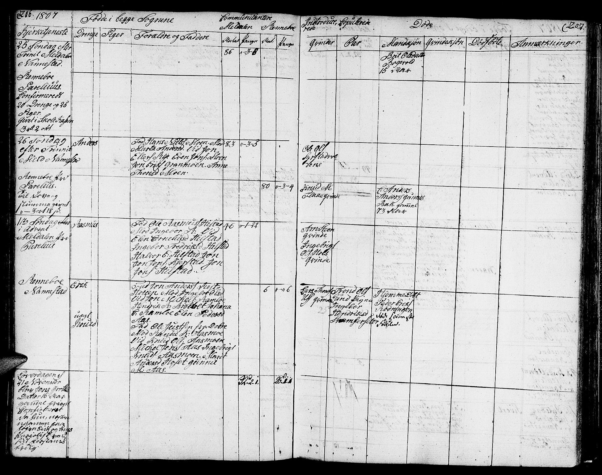 SAT, Ministerialprotokoller, klokkerbøker og fødselsregistre - Sør-Trøndelag, 672/L0852: Ministerialbok nr. 672A05, 1776-1815, s. 206-207