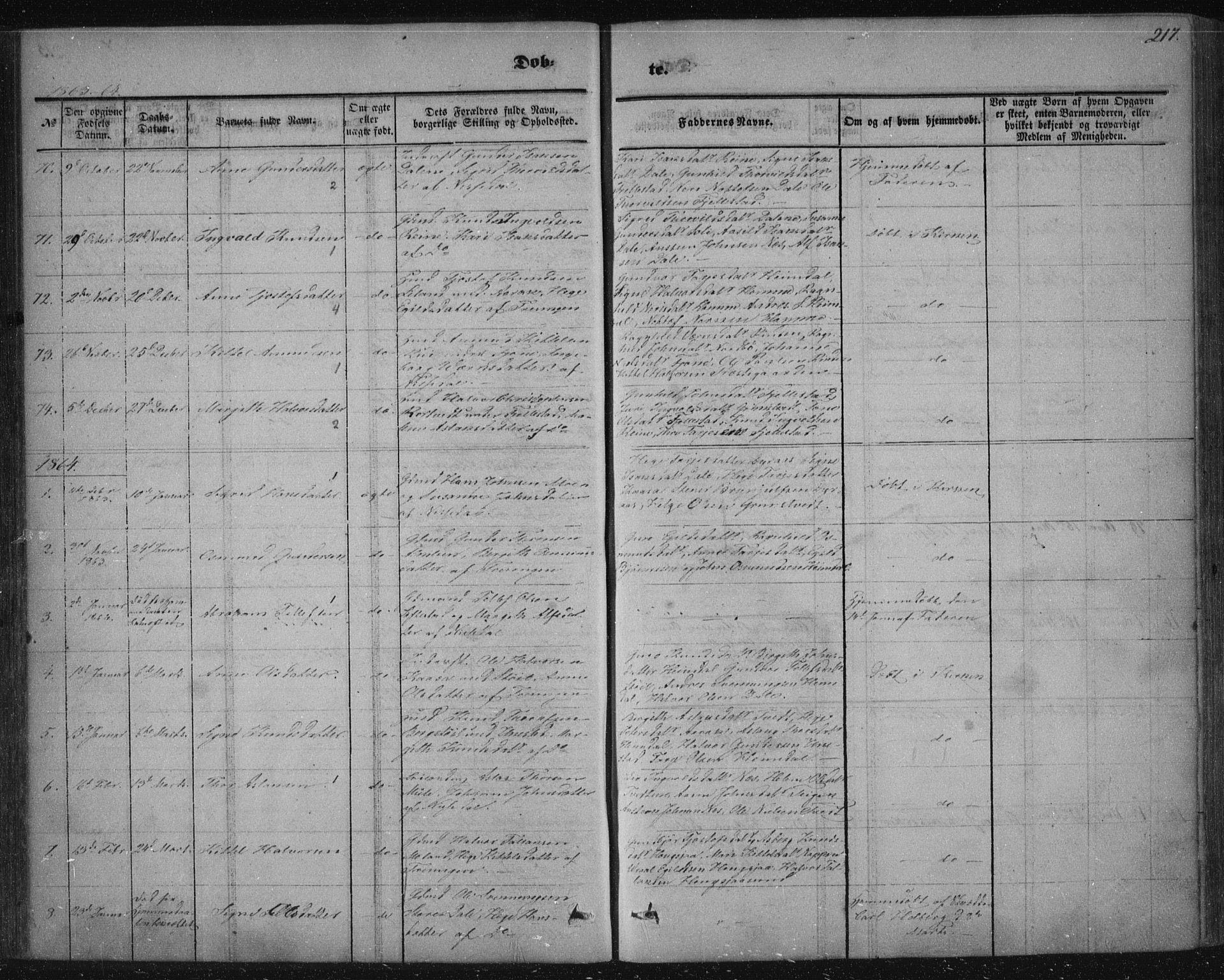 SAKO, Nissedal kirkebøker, F/Fa/L0003: Ministerialbok nr. I 3, 1846-1870, s. 216-217