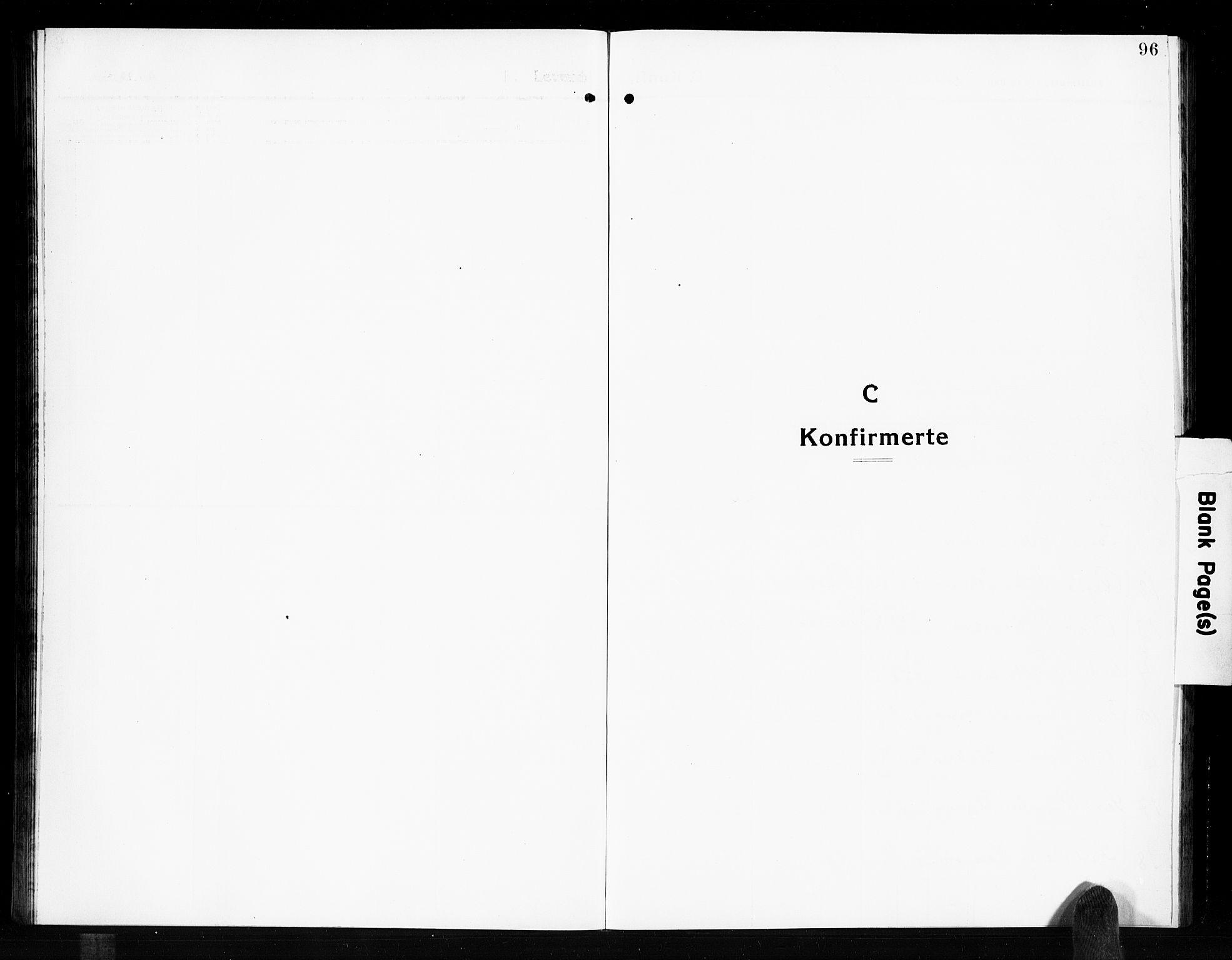 SAKO, Solum kirkebøker, G/Gb/L0006: Klokkerbok nr. II 6, 1915-1927, s. 96