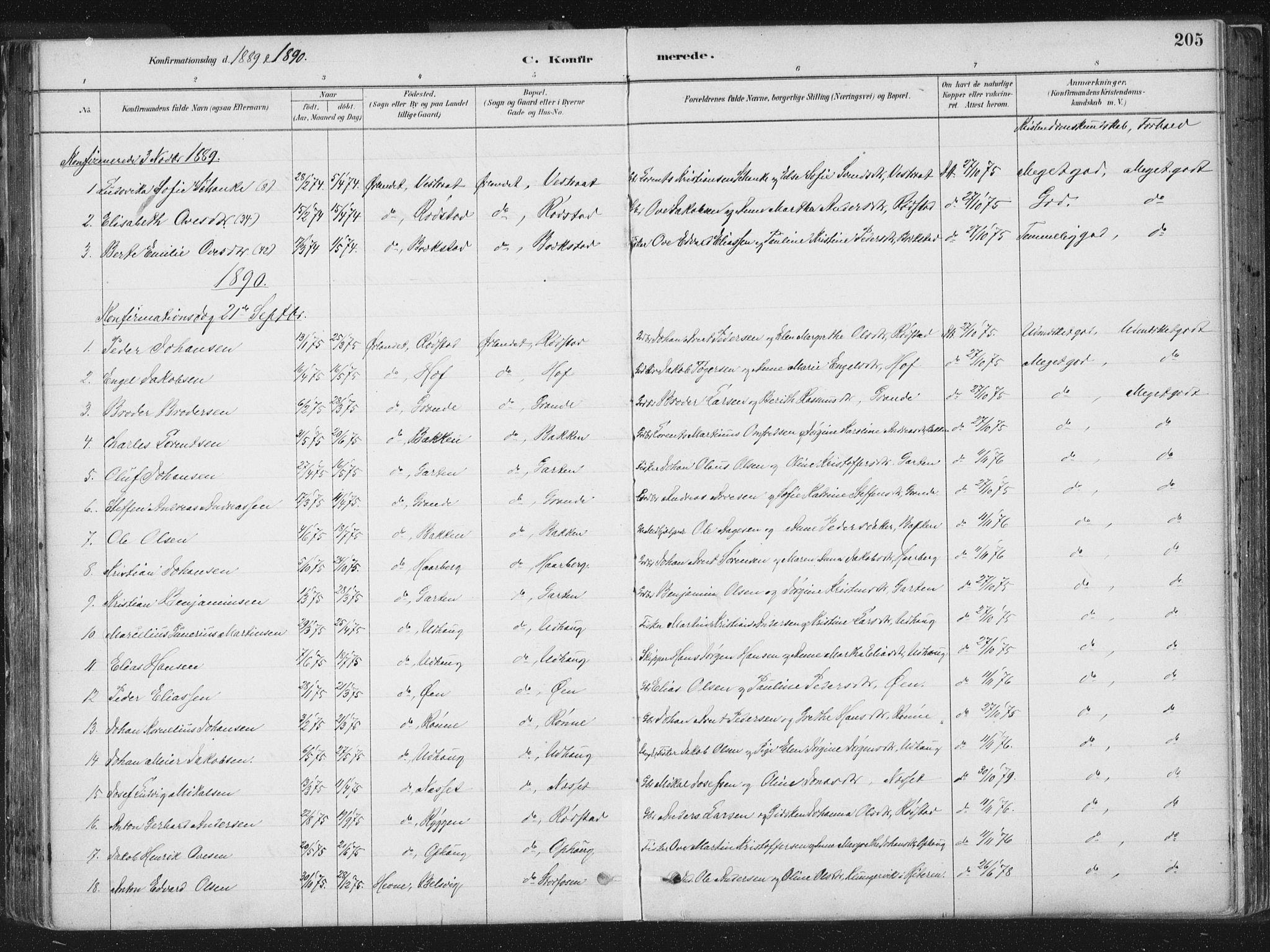 SAT, Ministerialprotokoller, klokkerbøker og fødselsregistre - Sør-Trøndelag, 659/L0739: Ministerialbok nr. 659A09, 1879-1893, s. 205
