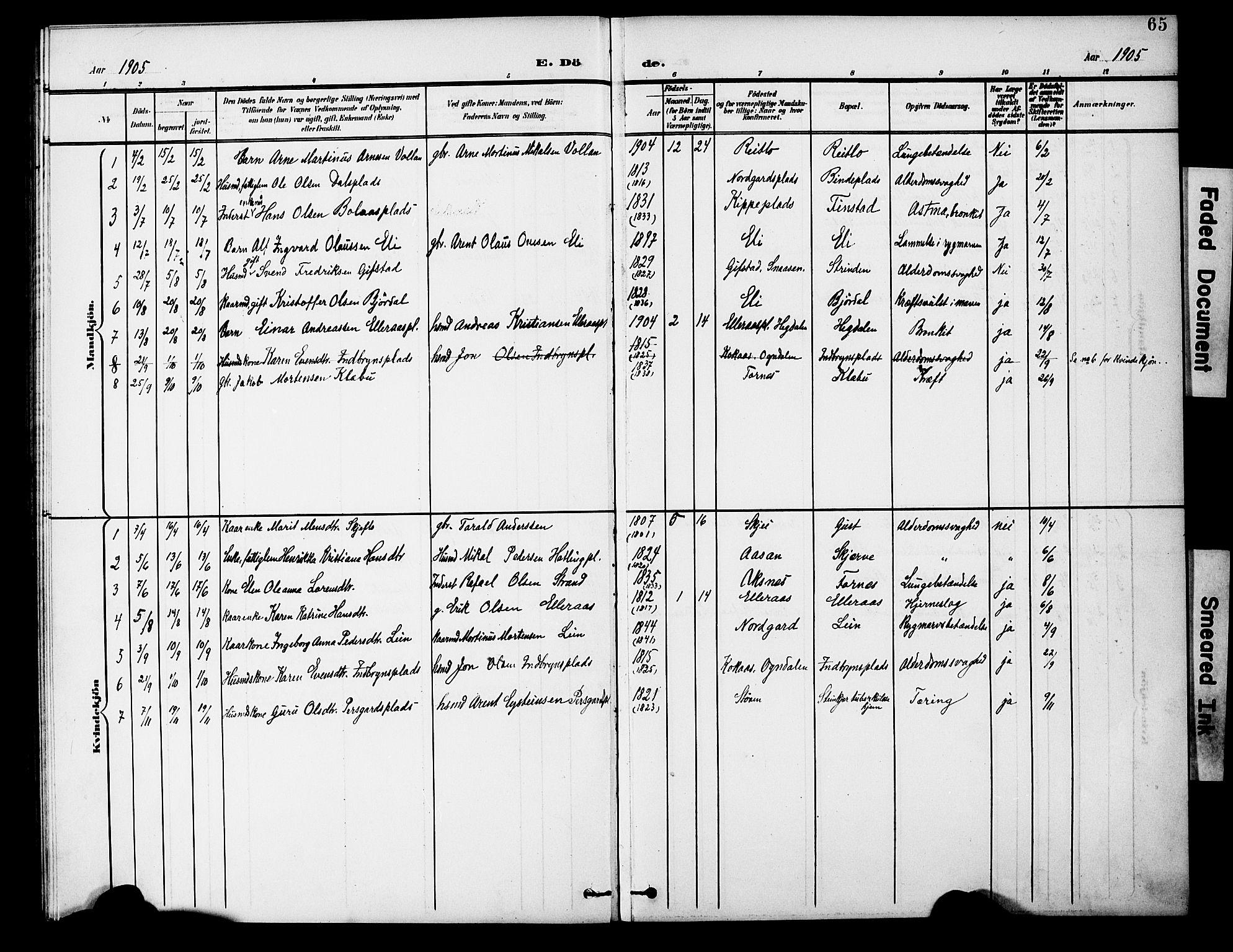 SAT, Ministerialprotokoller, klokkerbøker og fødselsregistre - Nord-Trøndelag, 746/L0452: Ministerialbok nr. 746A09, 1900-1908, s. 65
