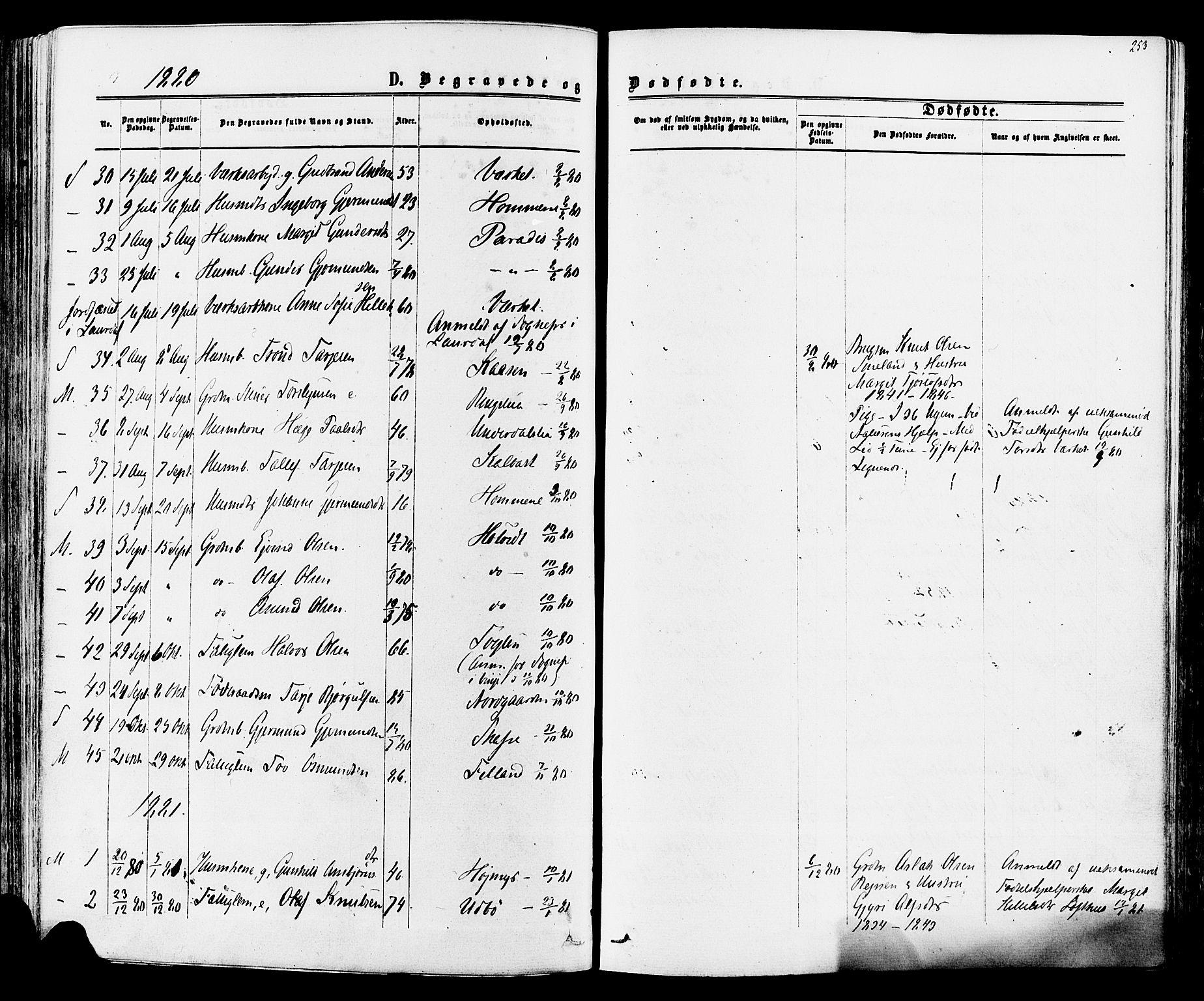 SAKO, Mo kirkebøker, F/Fa/L0006: Ministerialbok nr. I 6, 1865-1885, s. 253