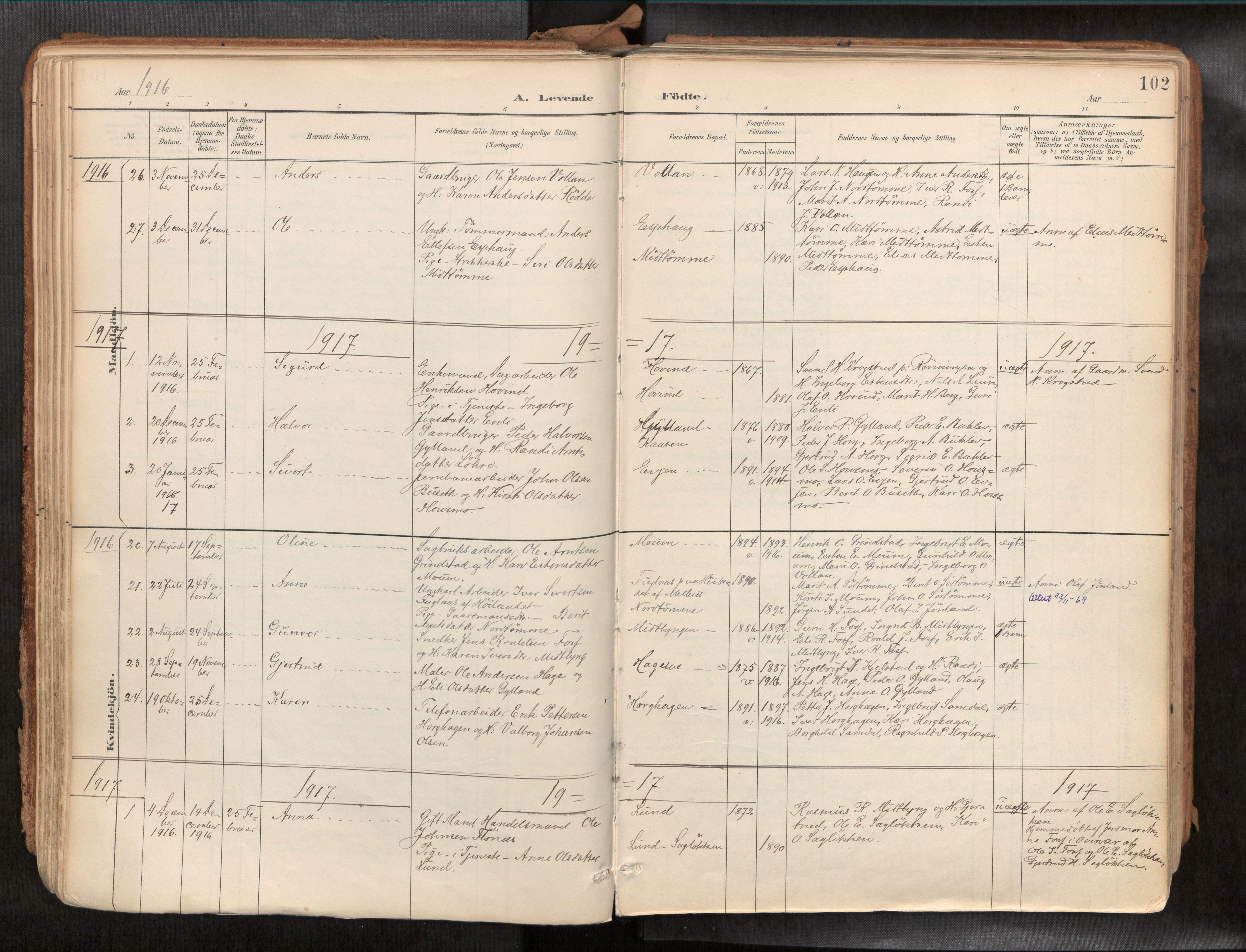 SAT, Ministerialprotokoller, klokkerbøker og fødselsregistre - Sør-Trøndelag, 692/L1105b: Ministerialbok nr. 692A06, 1891-1934, s. 102