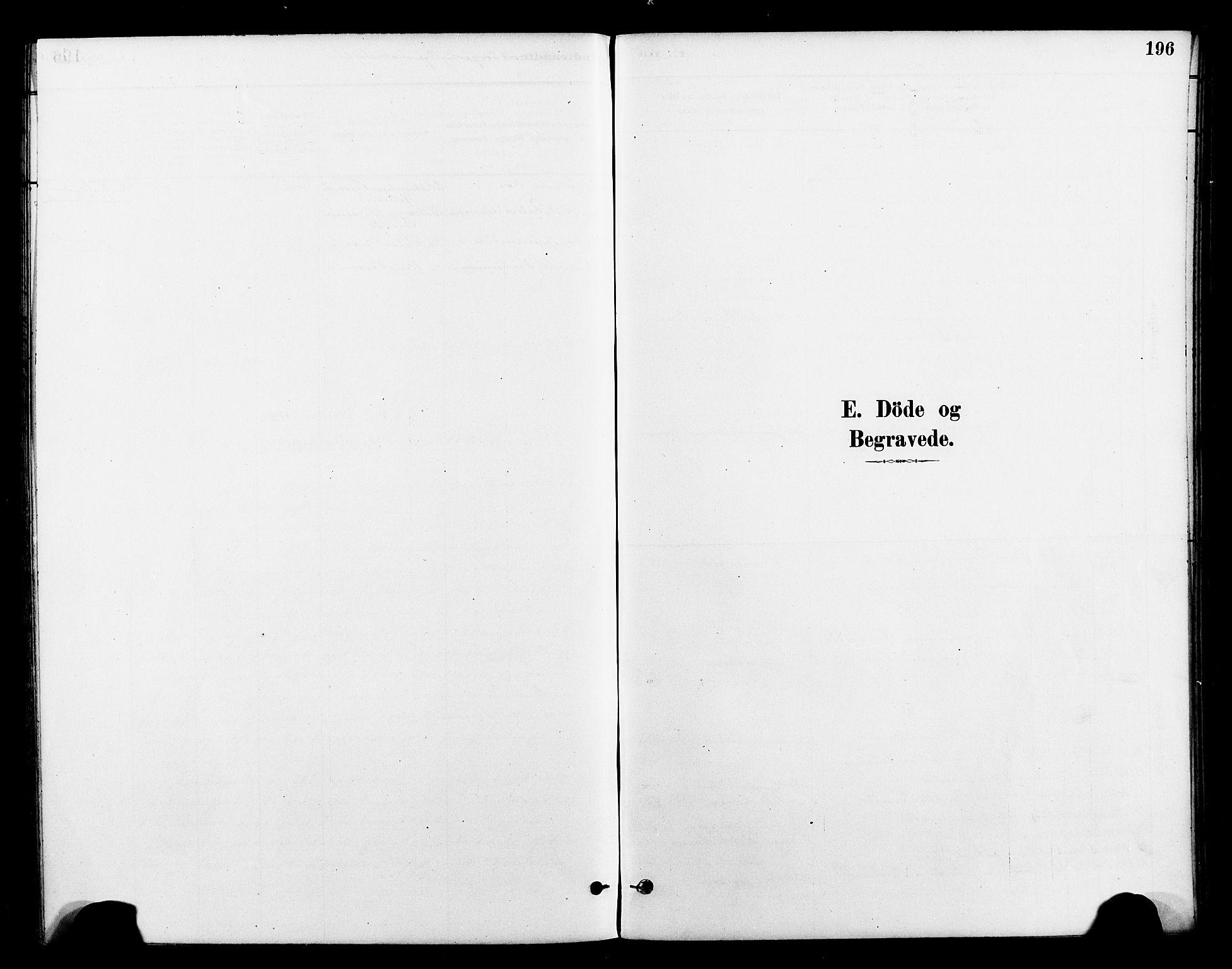 SAT, Ministerialprotokoller, klokkerbøker og fødselsregistre - Nord-Trøndelag, 712/L0100: Ministerialbok nr. 712A01, 1880-1900, s. 196