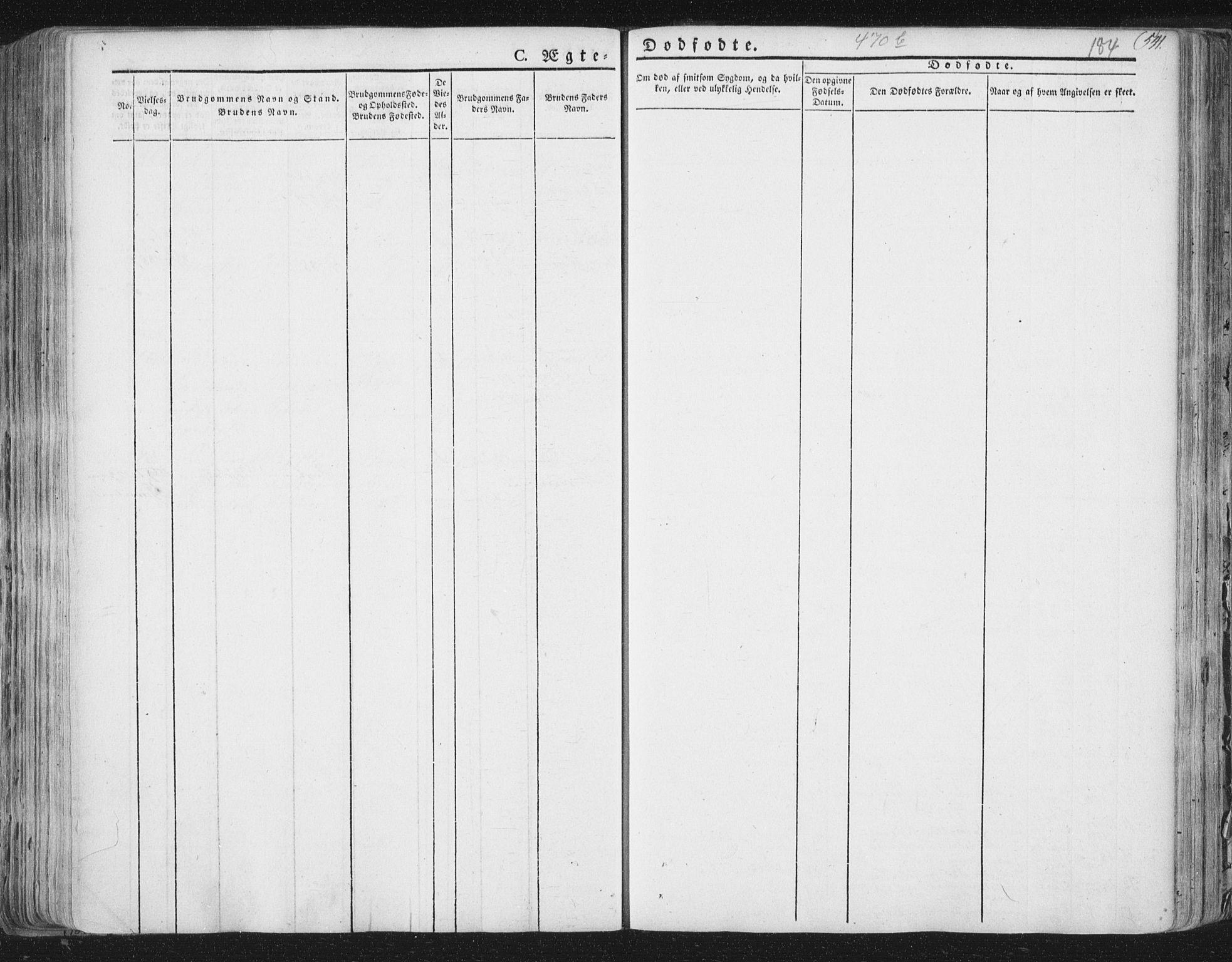 SAT, Ministerialprotokoller, klokkerbøker og fødselsregistre - Nord-Trøndelag, 758/L0513: Ministerialbok nr. 758A02 /3, 1839-1868, s. 184