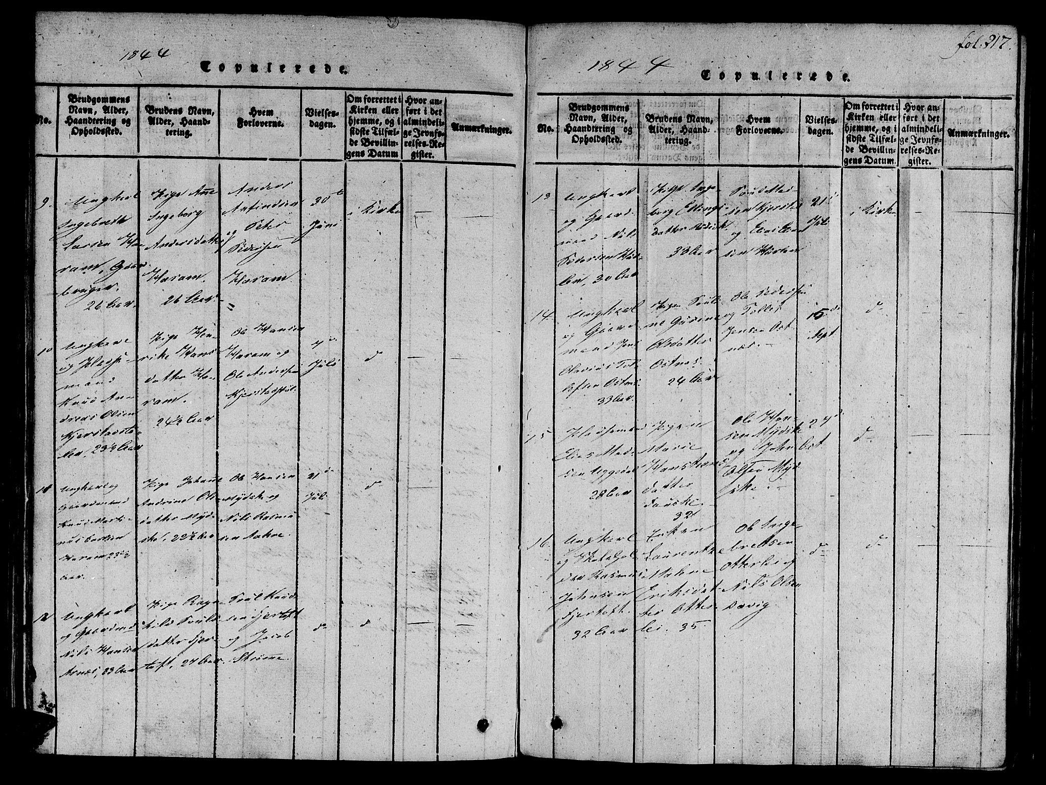 SAT, Ministerialprotokoller, klokkerbøker og fødselsregistre - Møre og Romsdal, 536/L0495: Ministerialbok nr. 536A04, 1818-1847, s. 217