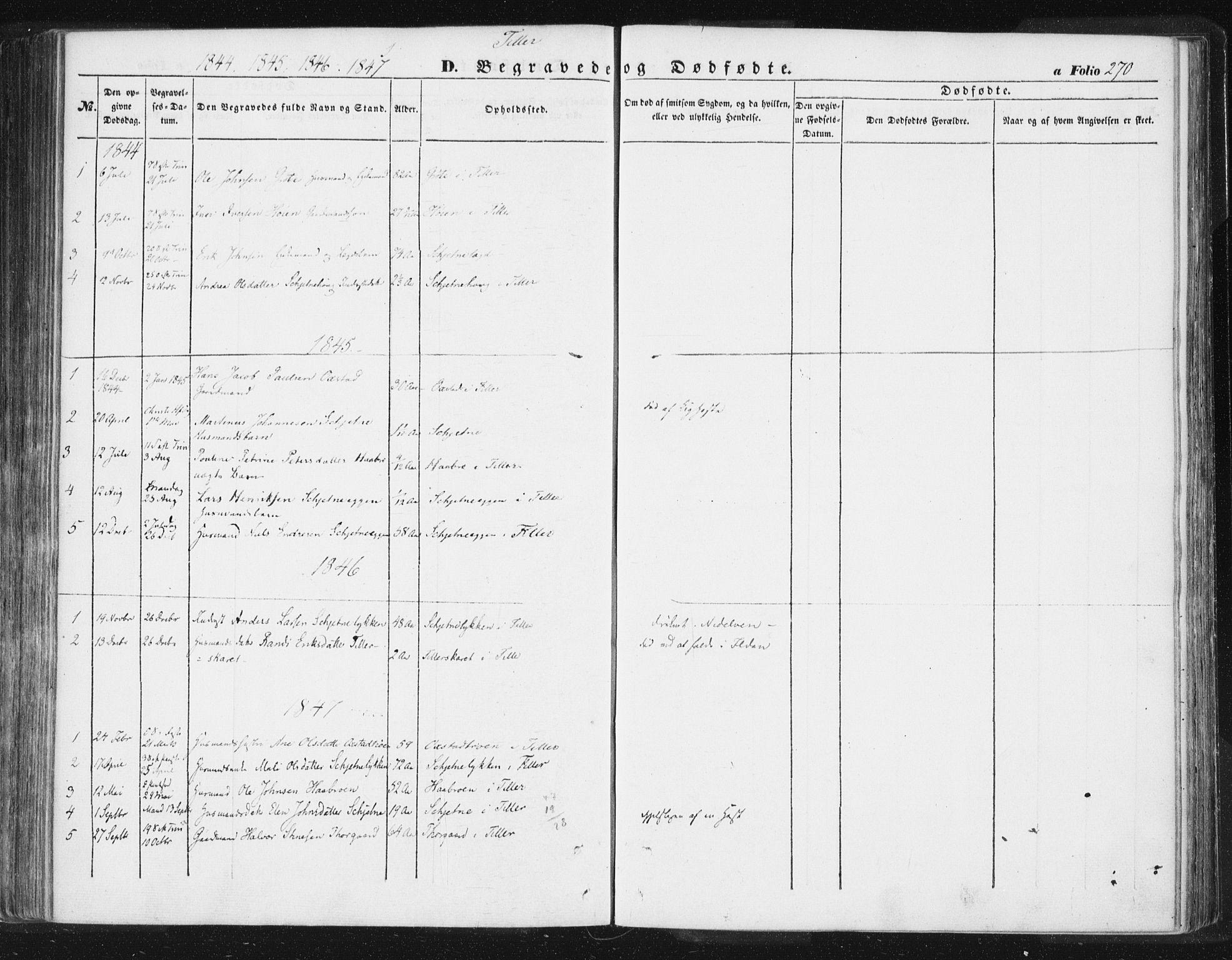SAT, Ministerialprotokoller, klokkerbøker og fødselsregistre - Sør-Trøndelag, 618/L0441: Ministerialbok nr. 618A05, 1843-1862, s. 270
