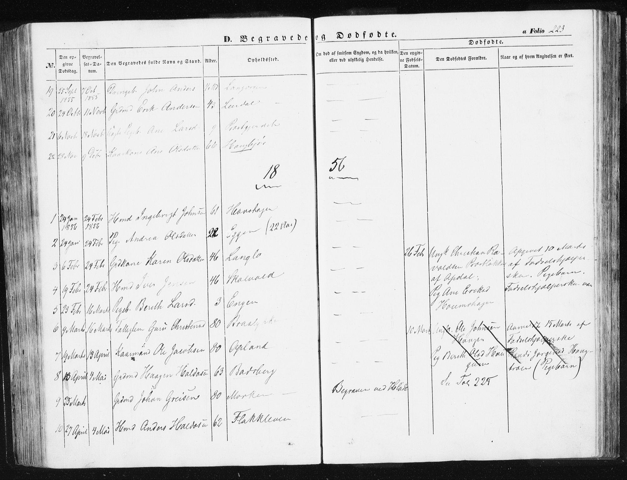 SAT, Ministerialprotokoller, klokkerbøker og fødselsregistre - Sør-Trøndelag, 612/L0376: Ministerialbok nr. 612A08, 1846-1859, s. 223