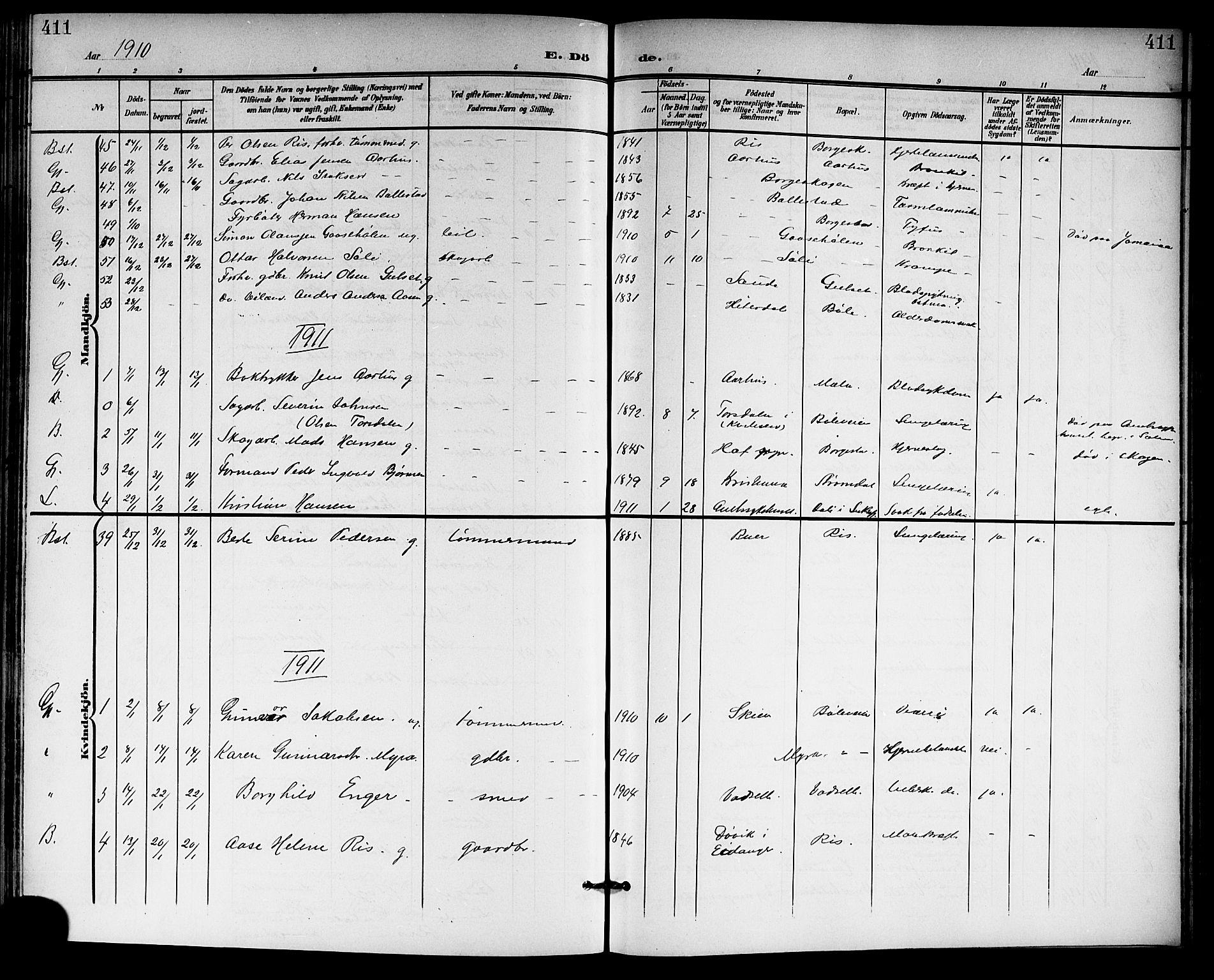SAKO, Gjerpen kirkebøker, G/Ga/L0003: Klokkerbok nr. I 3, 1901-1919, s. 411