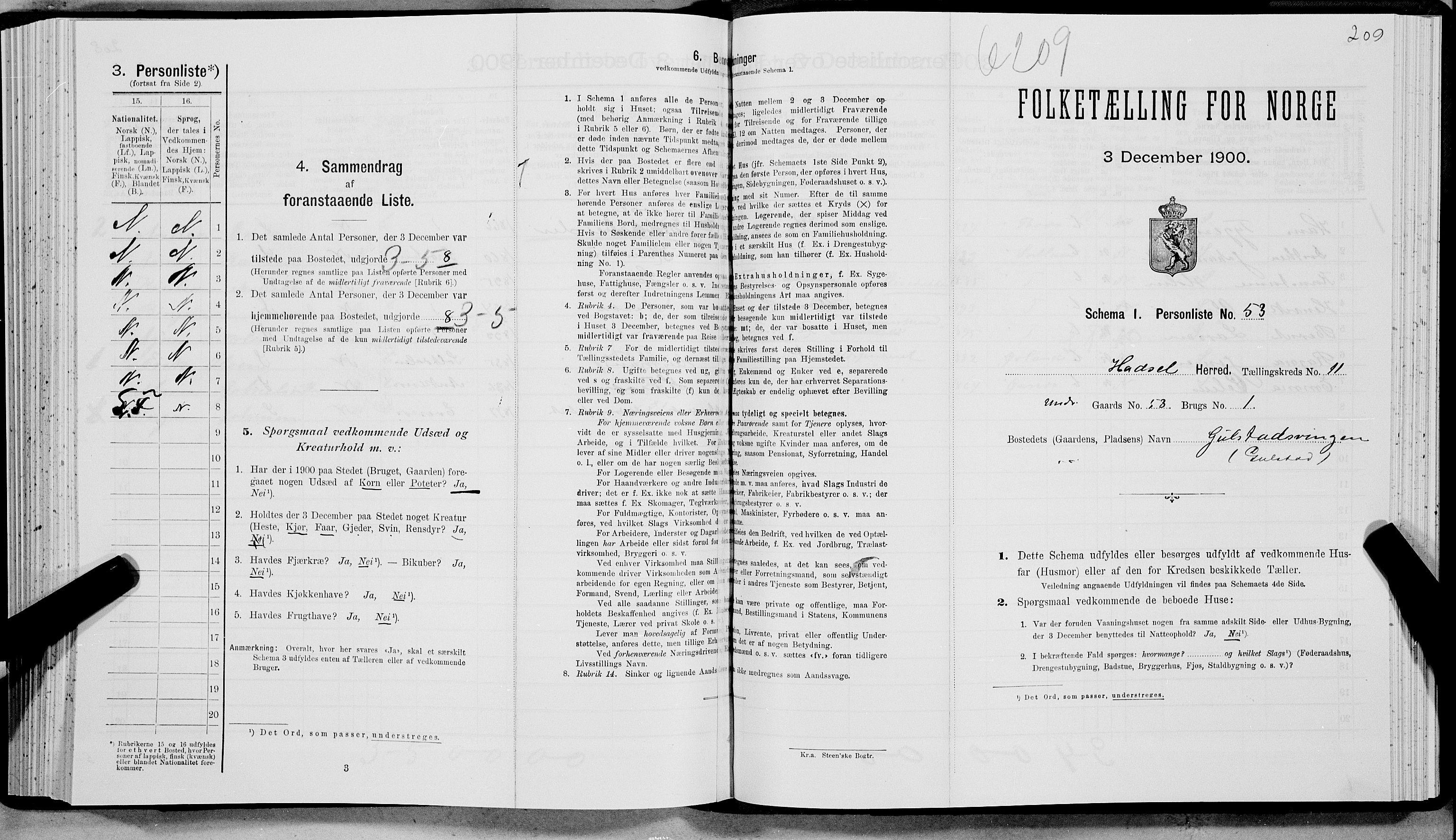 SAT, Folketelling 1900 for 1866 Hadsel herred, 1900, s. 1019