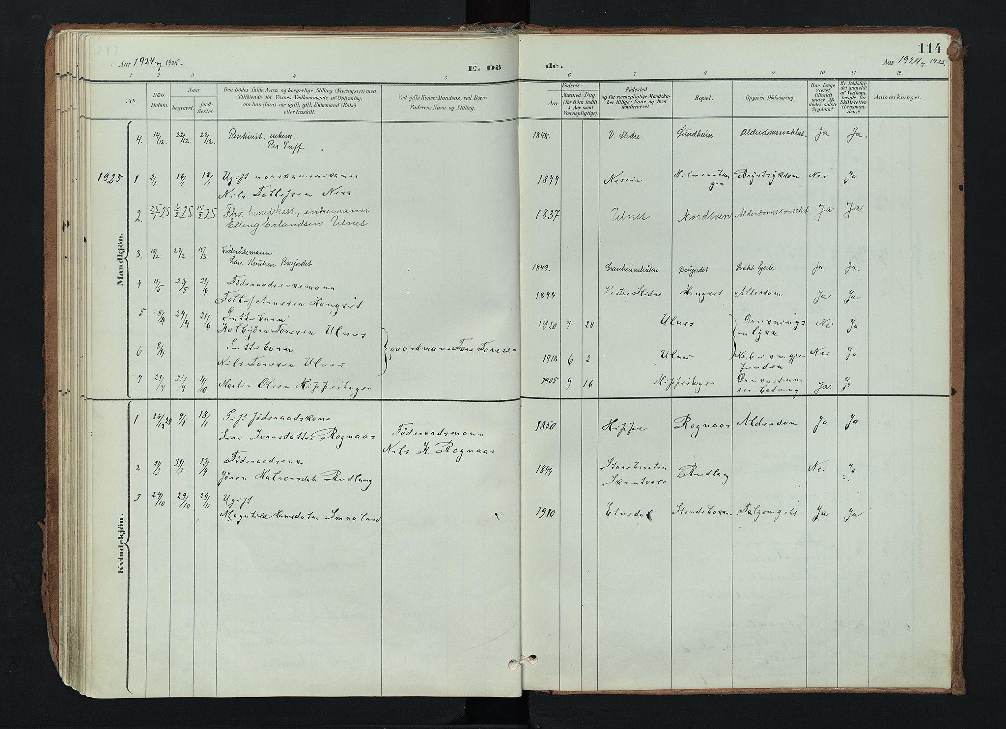 SAH, Nord-Aurdal prestekontor, Ministerialbok nr. 17, 1897-1926, s. 114