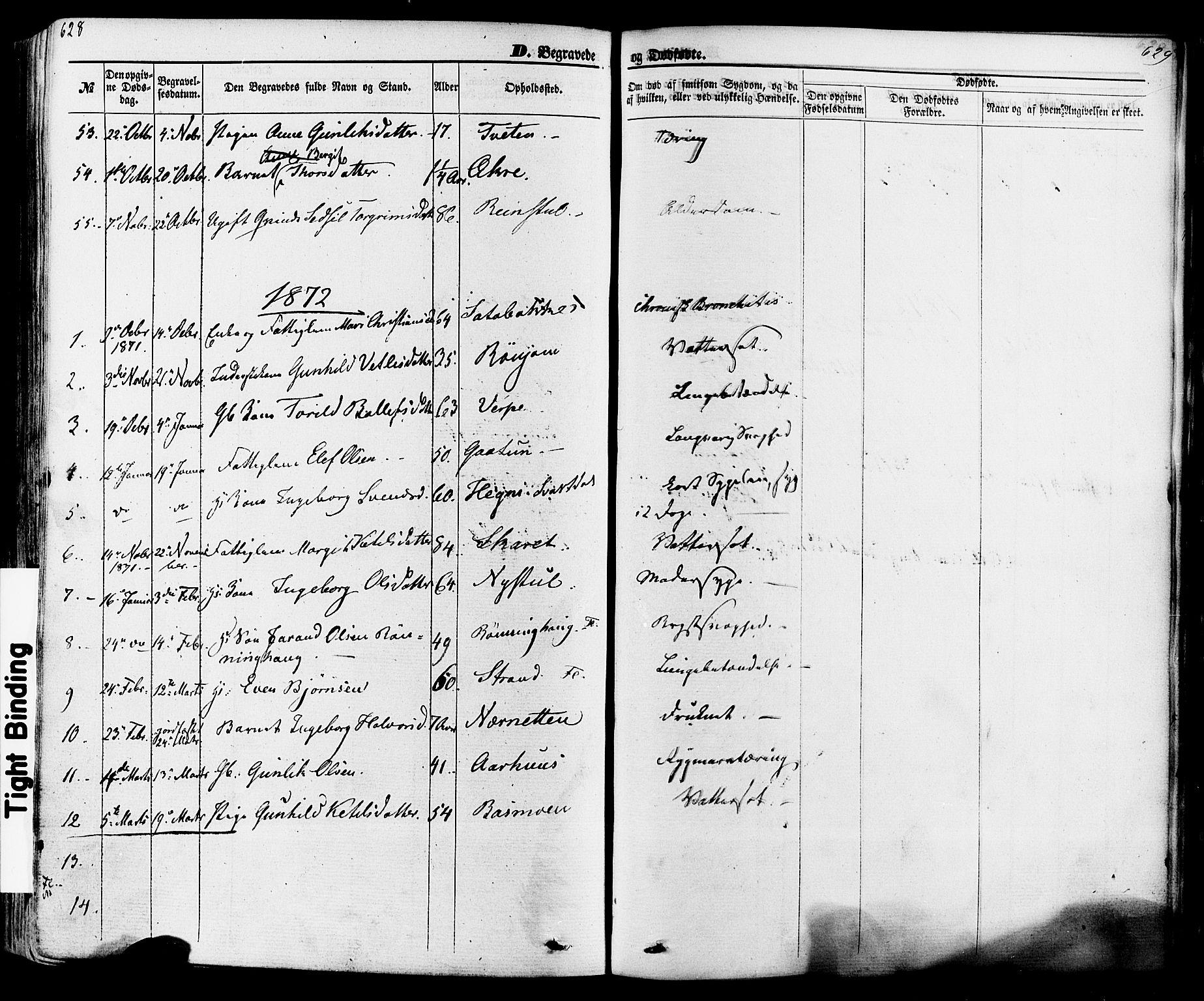 SAKO, Seljord kirkebøker, F/Fa/L0013: Ministerialbok nr. I 13, 1866-1876, s. 628-629