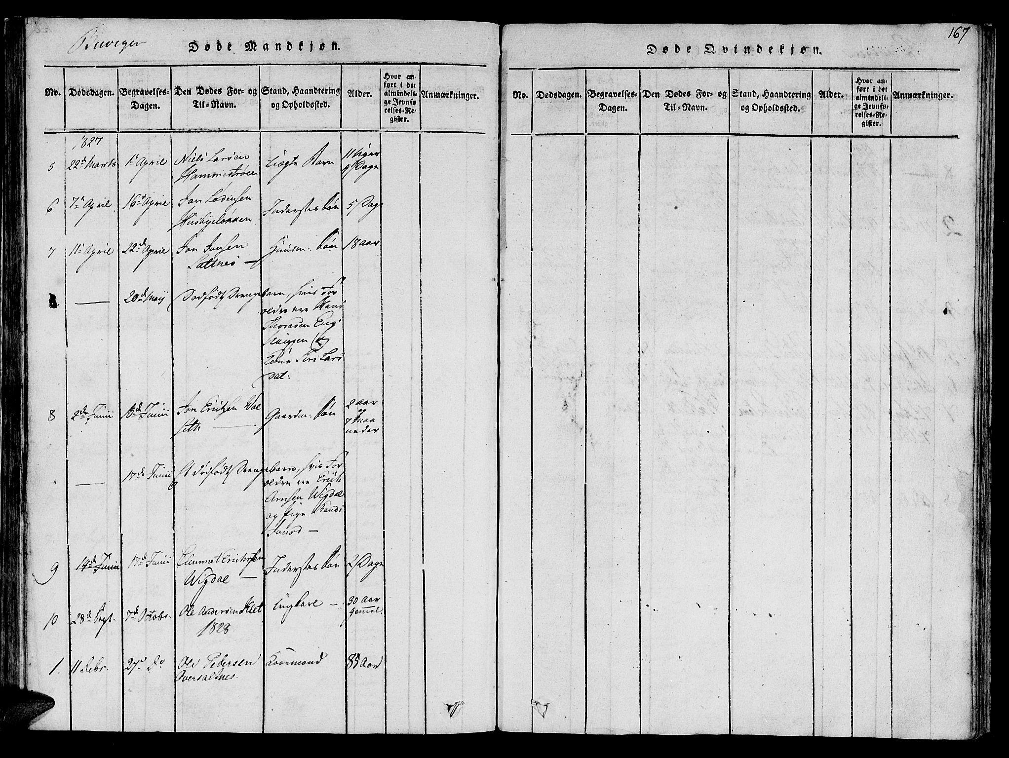 SAT, Ministerialprotokoller, klokkerbøker og fødselsregistre - Sør-Trøndelag, 612/L0373: Ministerialbok nr. 612A06 /2, 1816-1828, s. 167