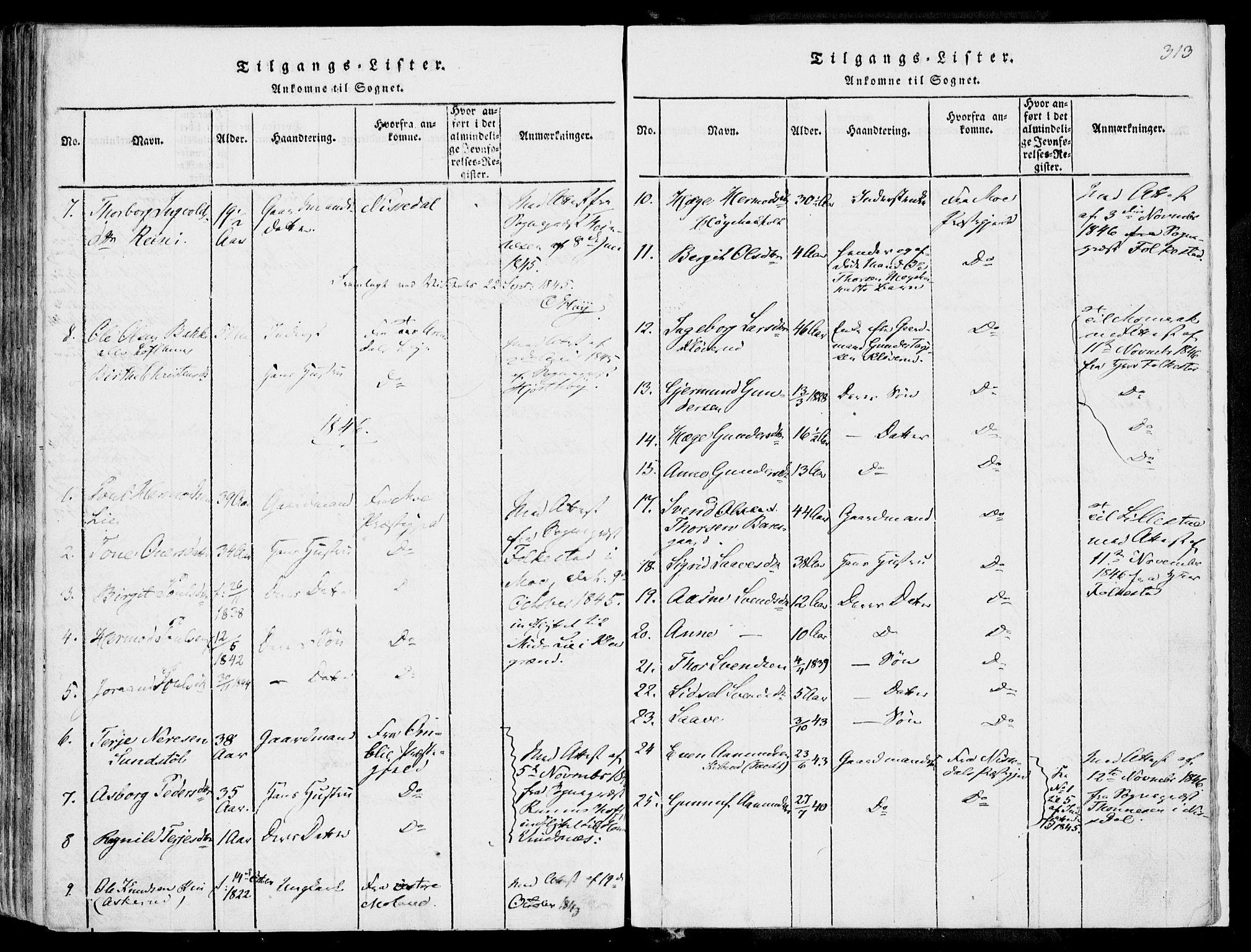 SAKO, Fyresdal kirkebøker, F/Fa/L0004: Ministerialbok nr. I 4, 1815-1854, s. 313