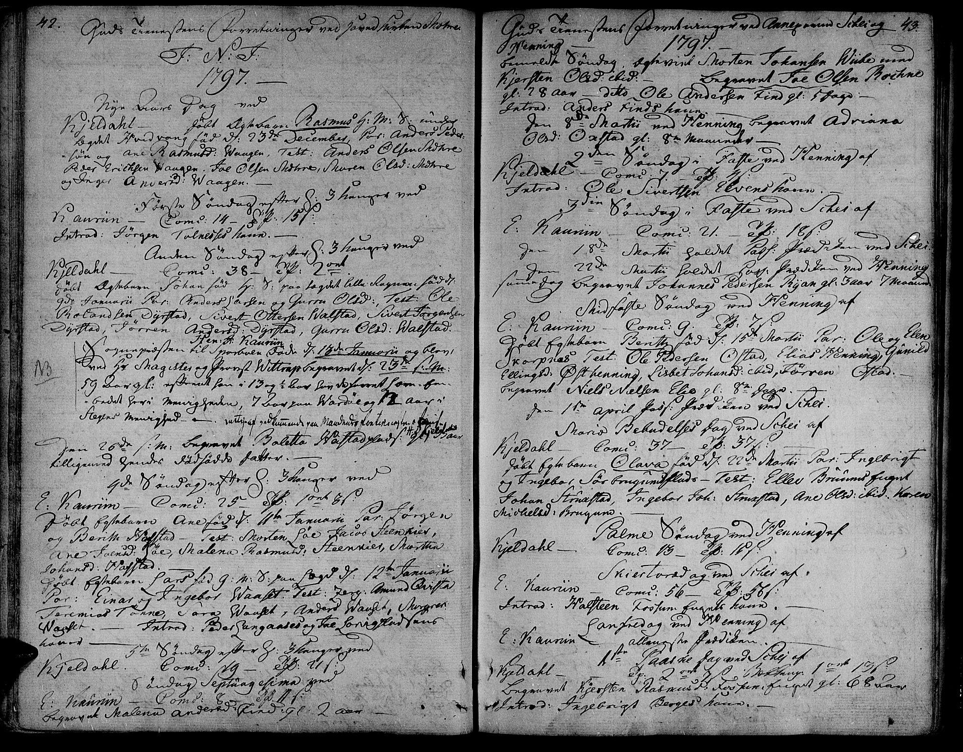 SAT, Ministerialprotokoller, klokkerbøker og fødselsregistre - Nord-Trøndelag, 735/L0332: Ministerialbok nr. 735A03, 1795-1816, s. 42-43
