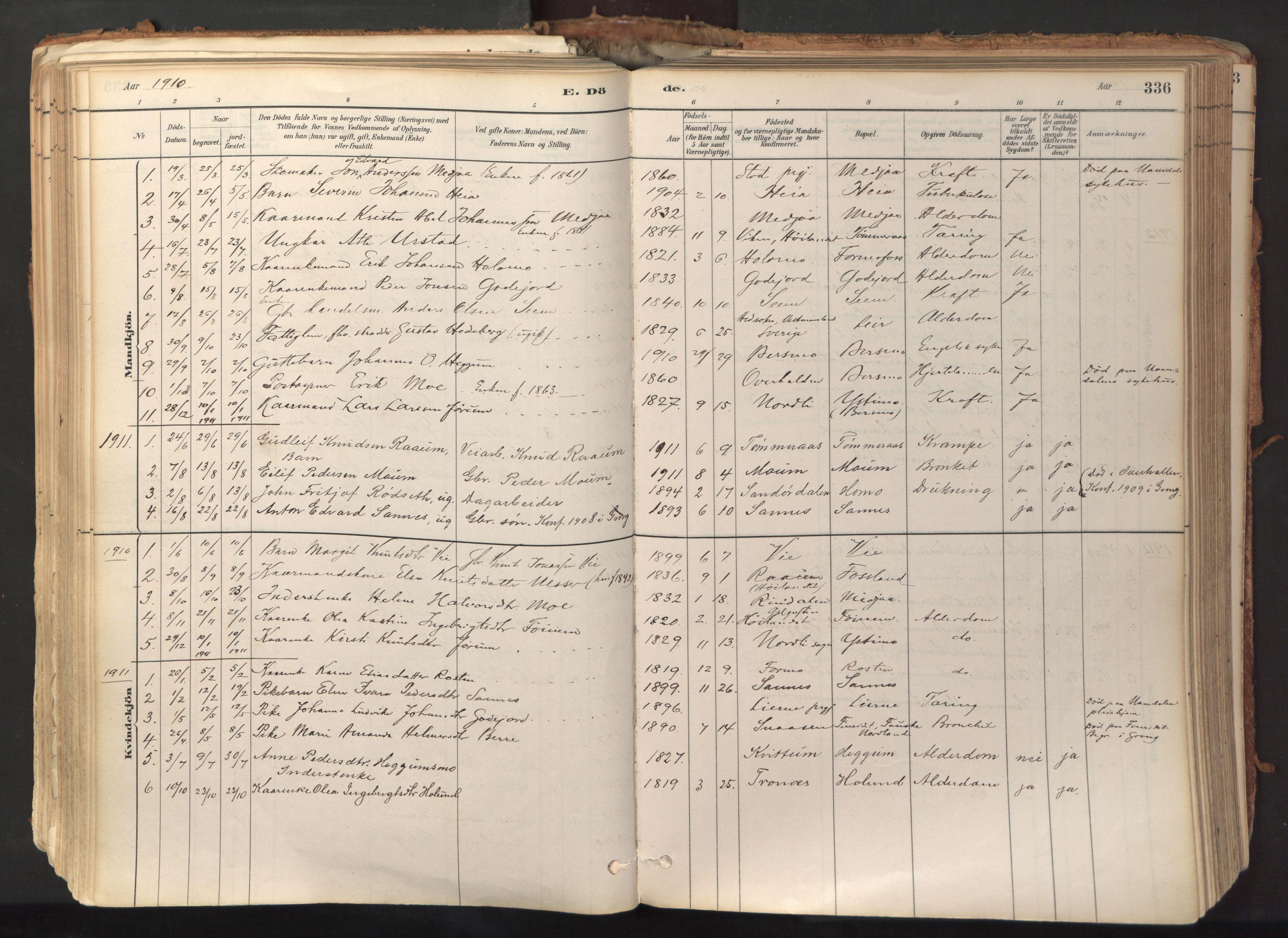 SAT, Ministerialprotokoller, klokkerbøker og fødselsregistre - Nord-Trøndelag, 758/L0519: Ministerialbok nr. 758A04, 1880-1926, s. 336