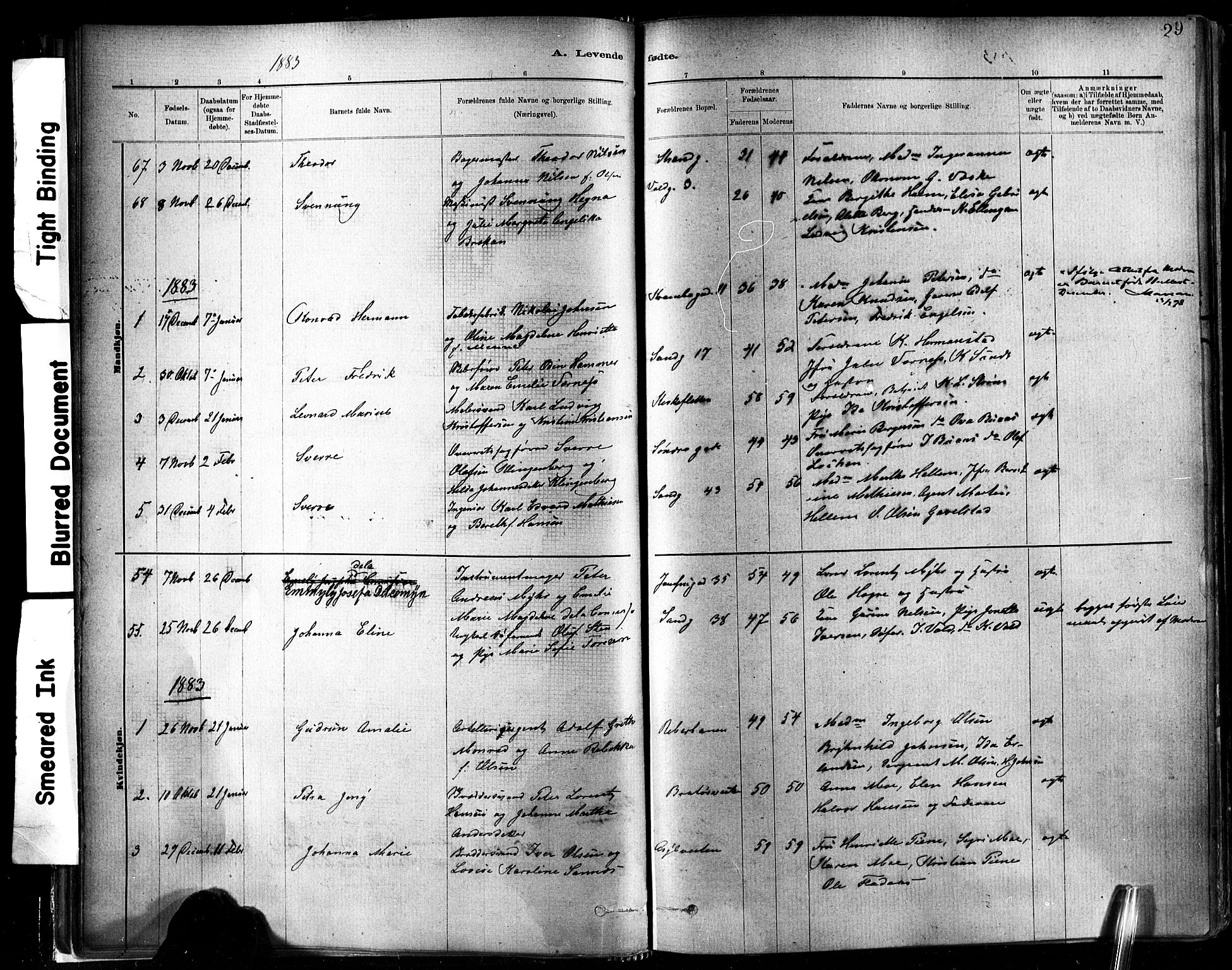 SAT, Ministerialprotokoller, klokkerbøker og fødselsregistre - Sør-Trøndelag, 602/L0119: Ministerialbok nr. 602A17, 1880-1901, s. 29