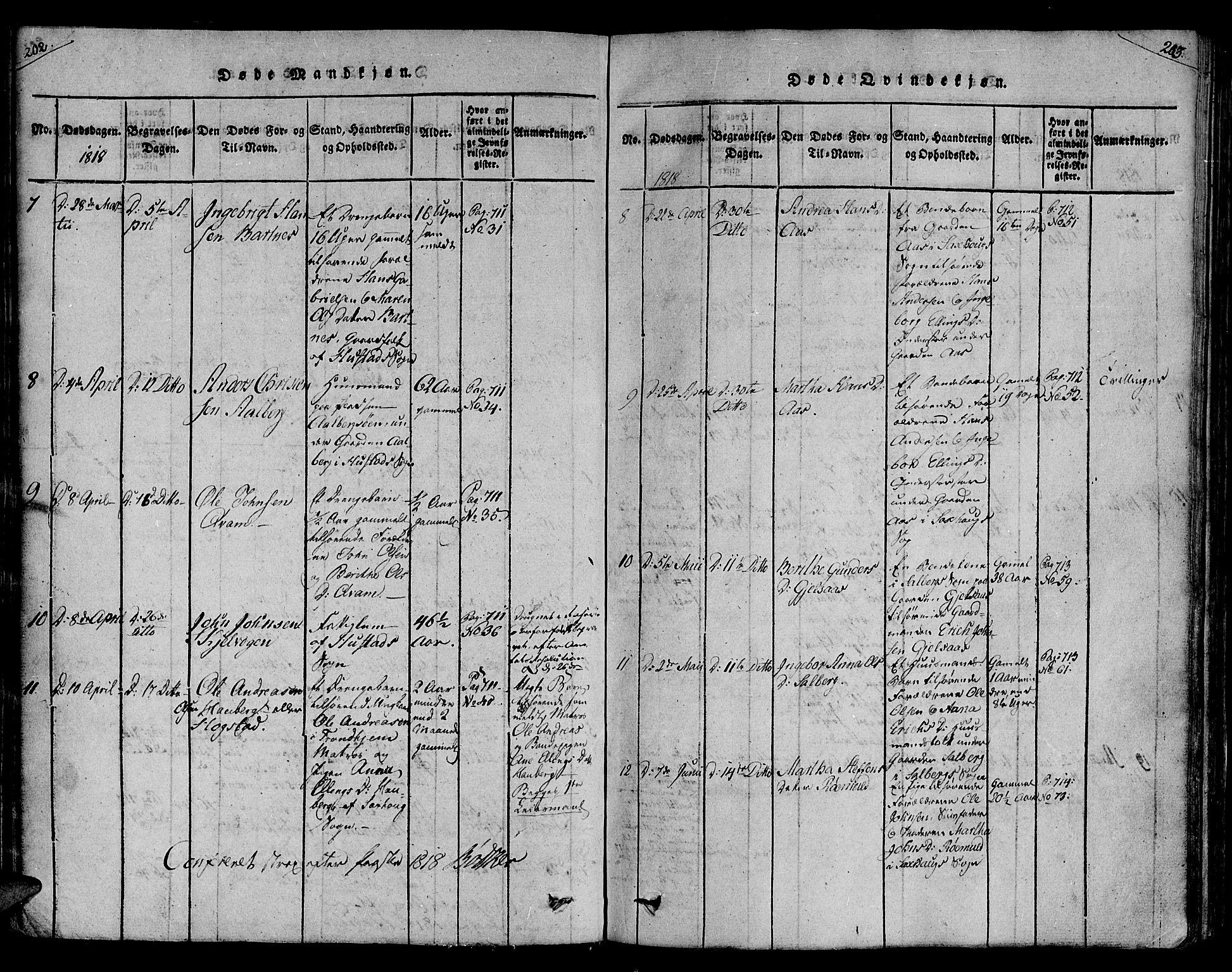 SAT, Ministerialprotokoller, klokkerbøker og fødselsregistre - Nord-Trøndelag, 730/L0275: Ministerialbok nr. 730A04, 1816-1822, s. 202-203