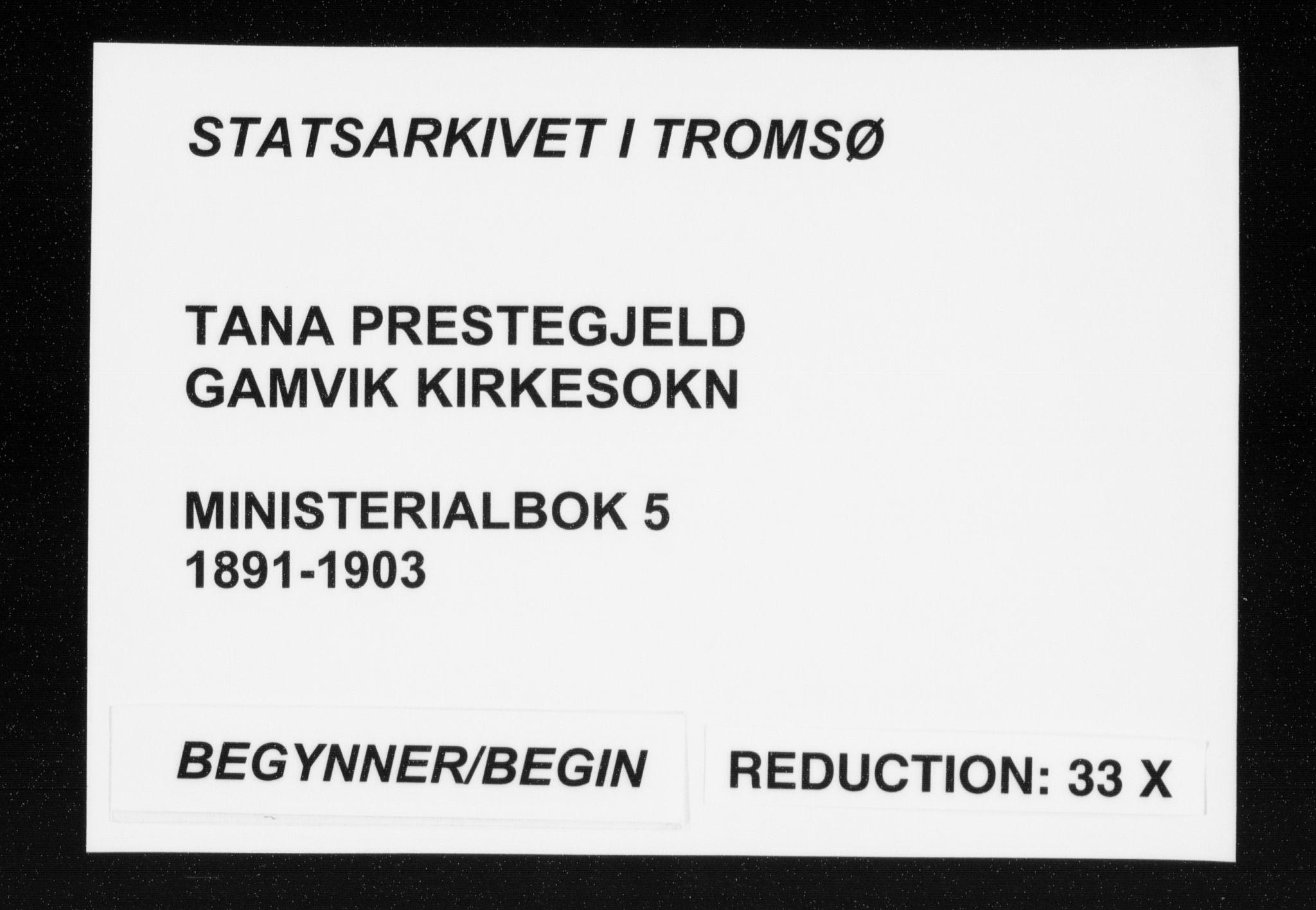 SATØ, Tana sokneprestkontor, H/Ha/L0005kirke: Ministerialbok nr. 5, 1891-1903