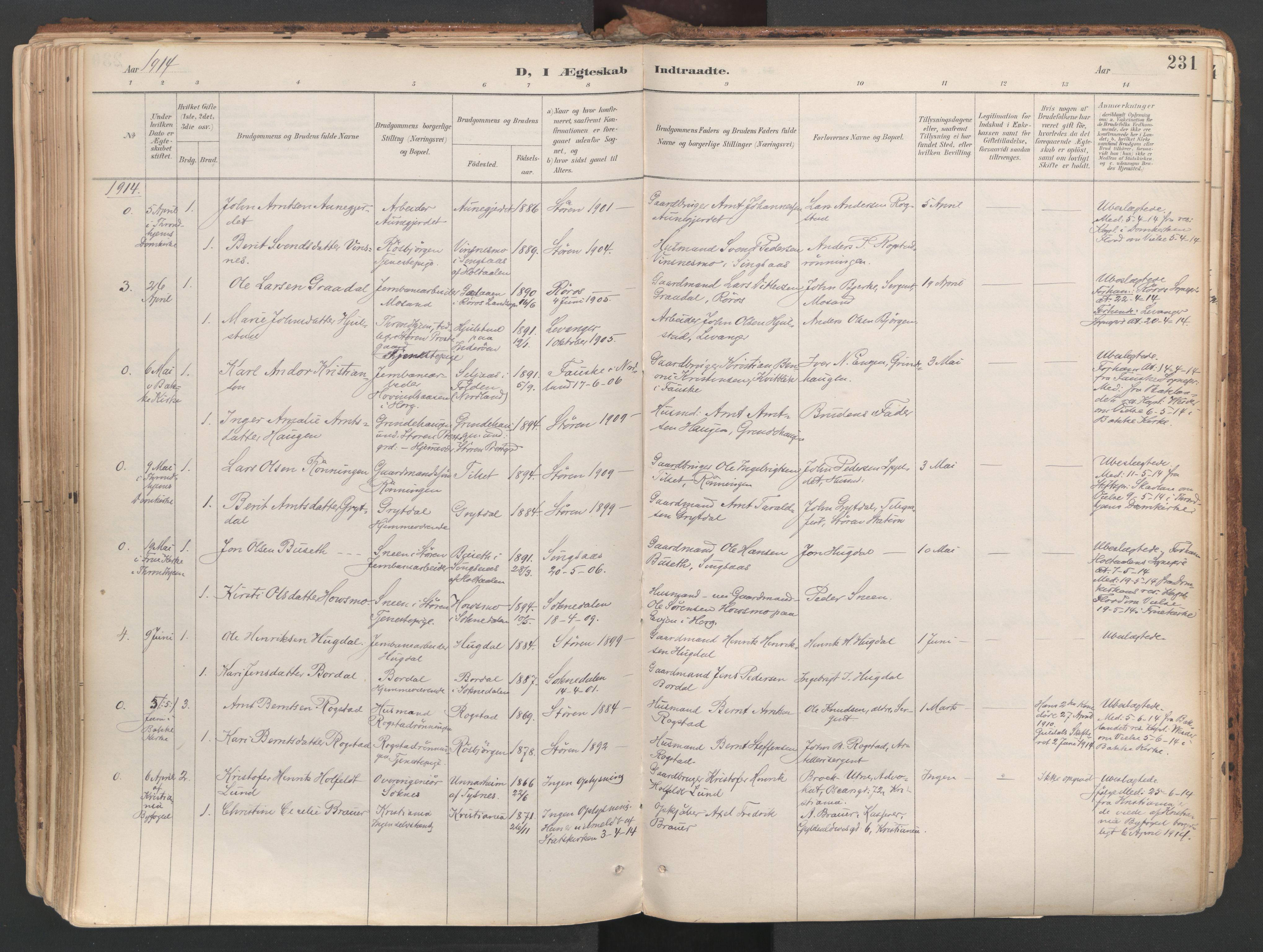SAT, Ministerialprotokoller, klokkerbøker og fødselsregistre - Sør-Trøndelag, 687/L1004: Ministerialbok nr. 687A10, 1891-1923, s. 231
