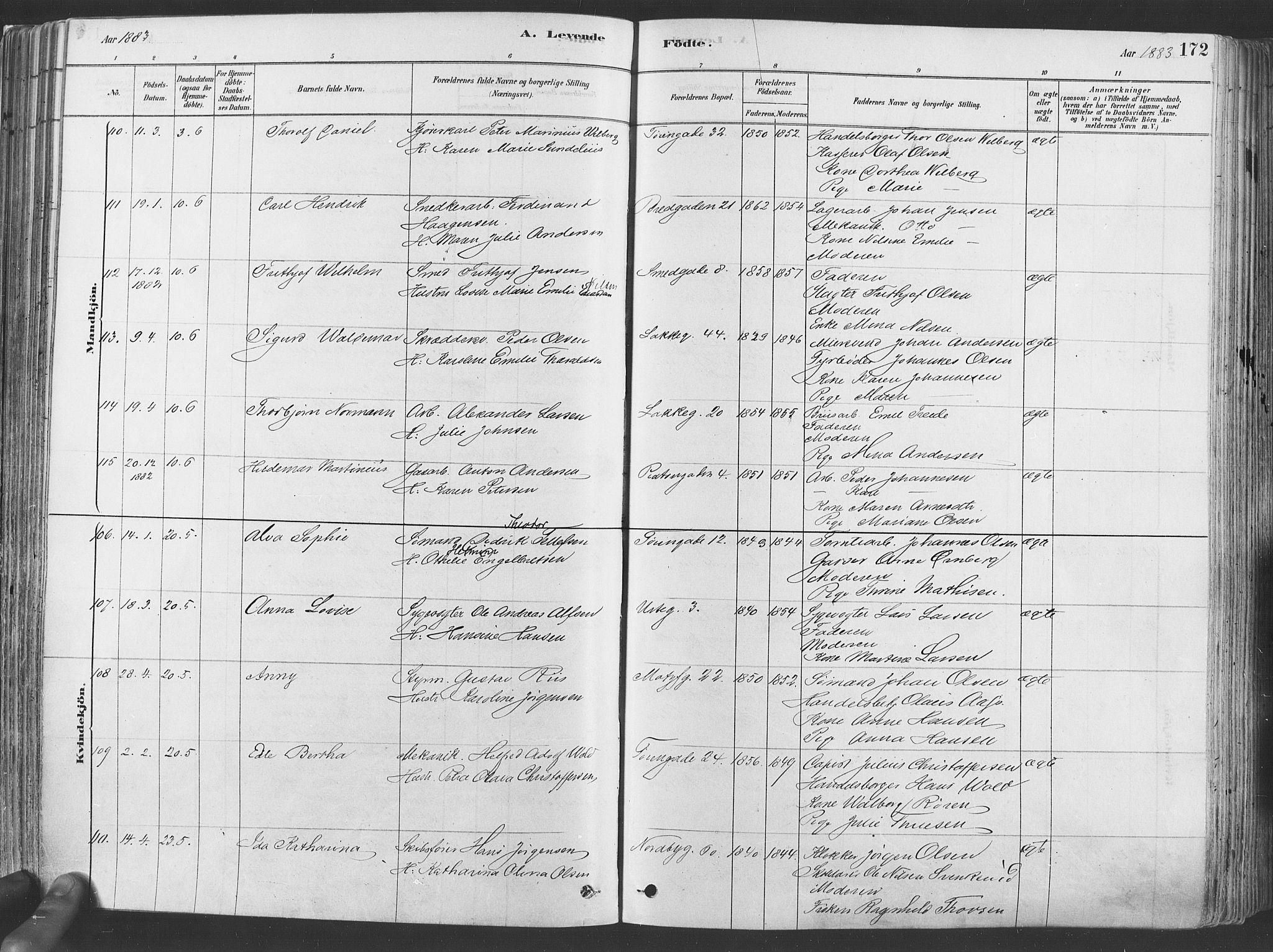 SAO, Grønland prestekontor Kirkebøker, F/Fa/L0007: Ministerialbok nr. 7, 1878-1888, s. 172
