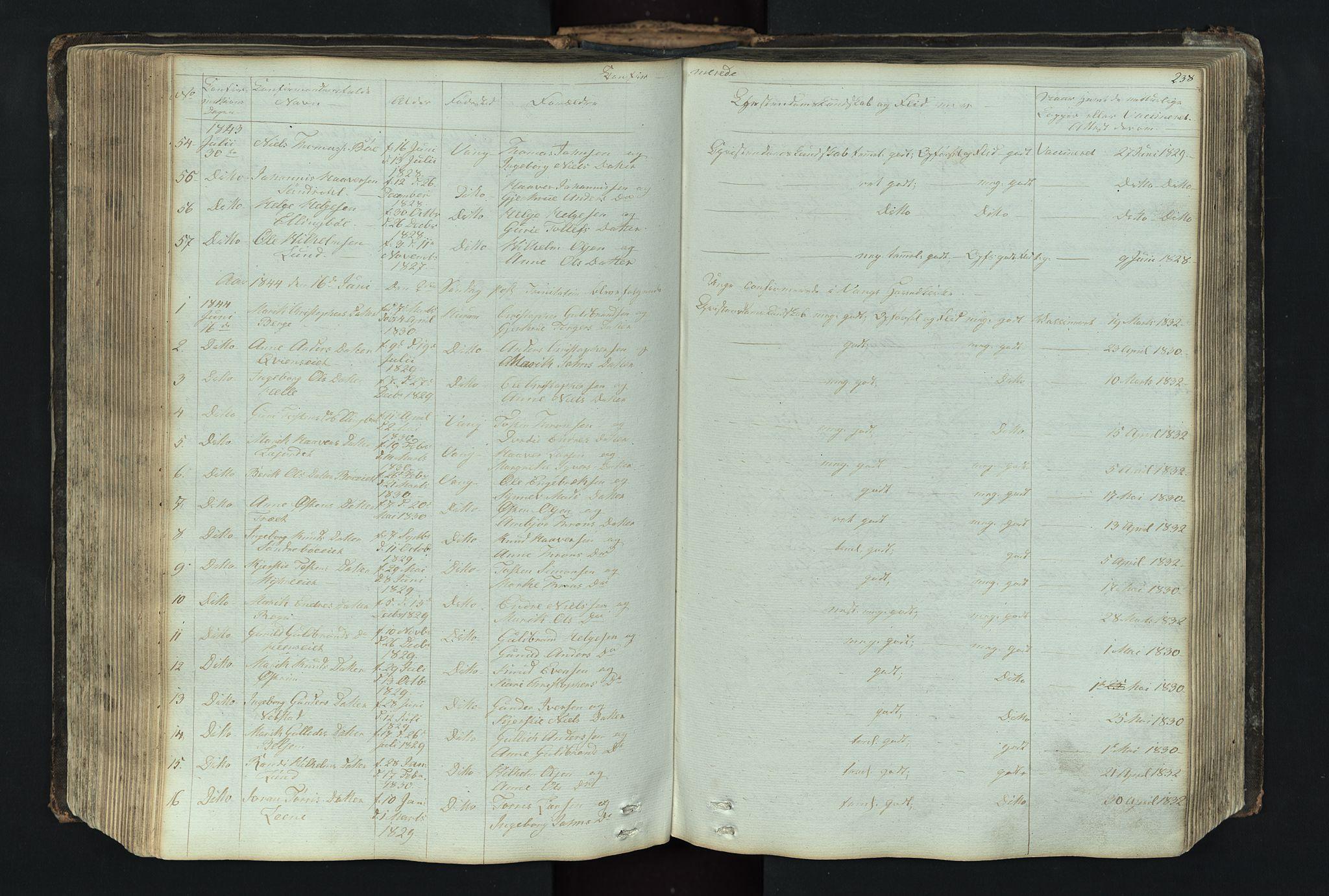 SAH, Vang prestekontor, Valdres, Klokkerbok nr. 4, 1835-1892, s. 238