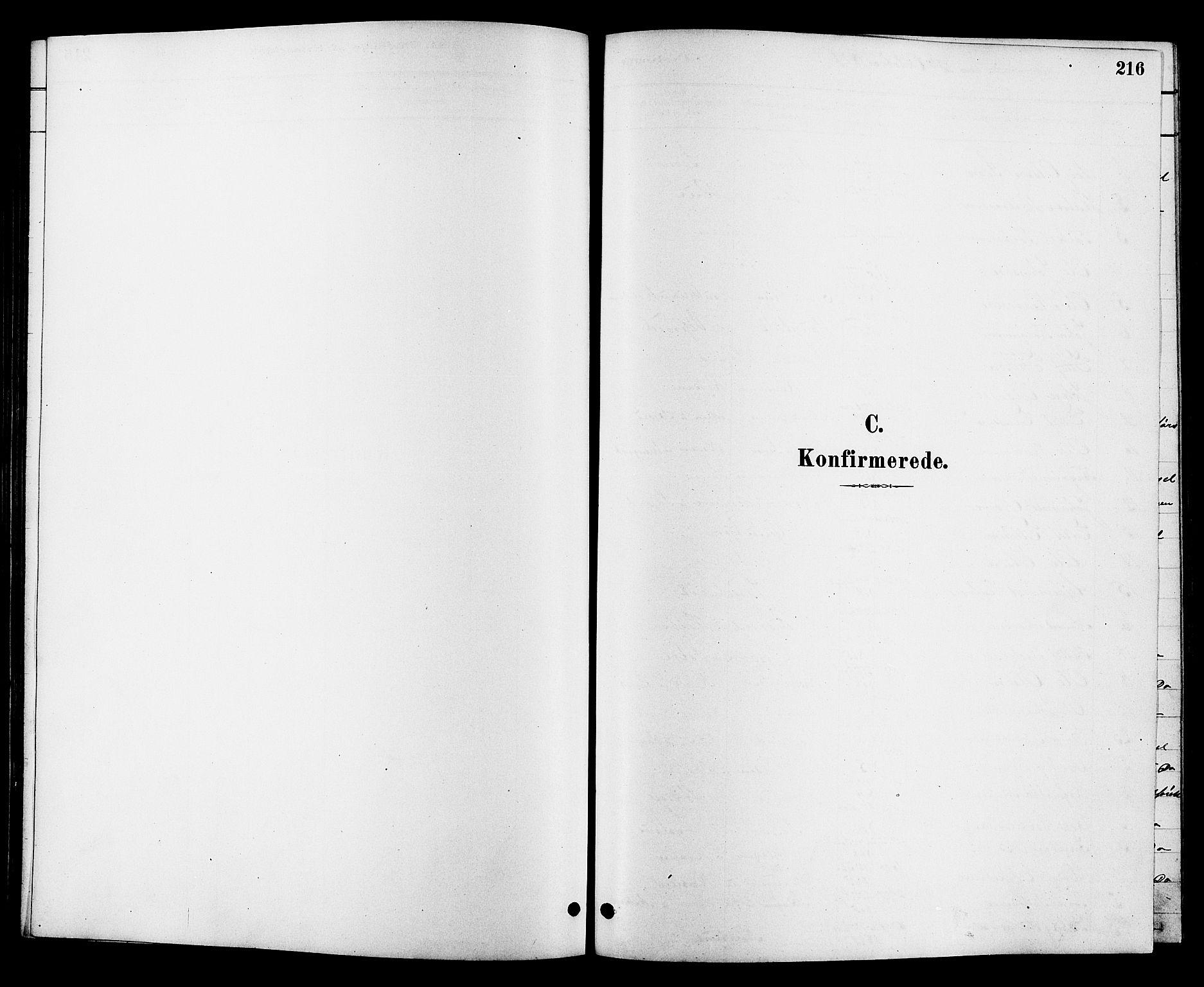 SAKO, Heddal kirkebøker, G/Ga/L0002: Klokkerbok nr. I 2, 1879-1908, s. 216