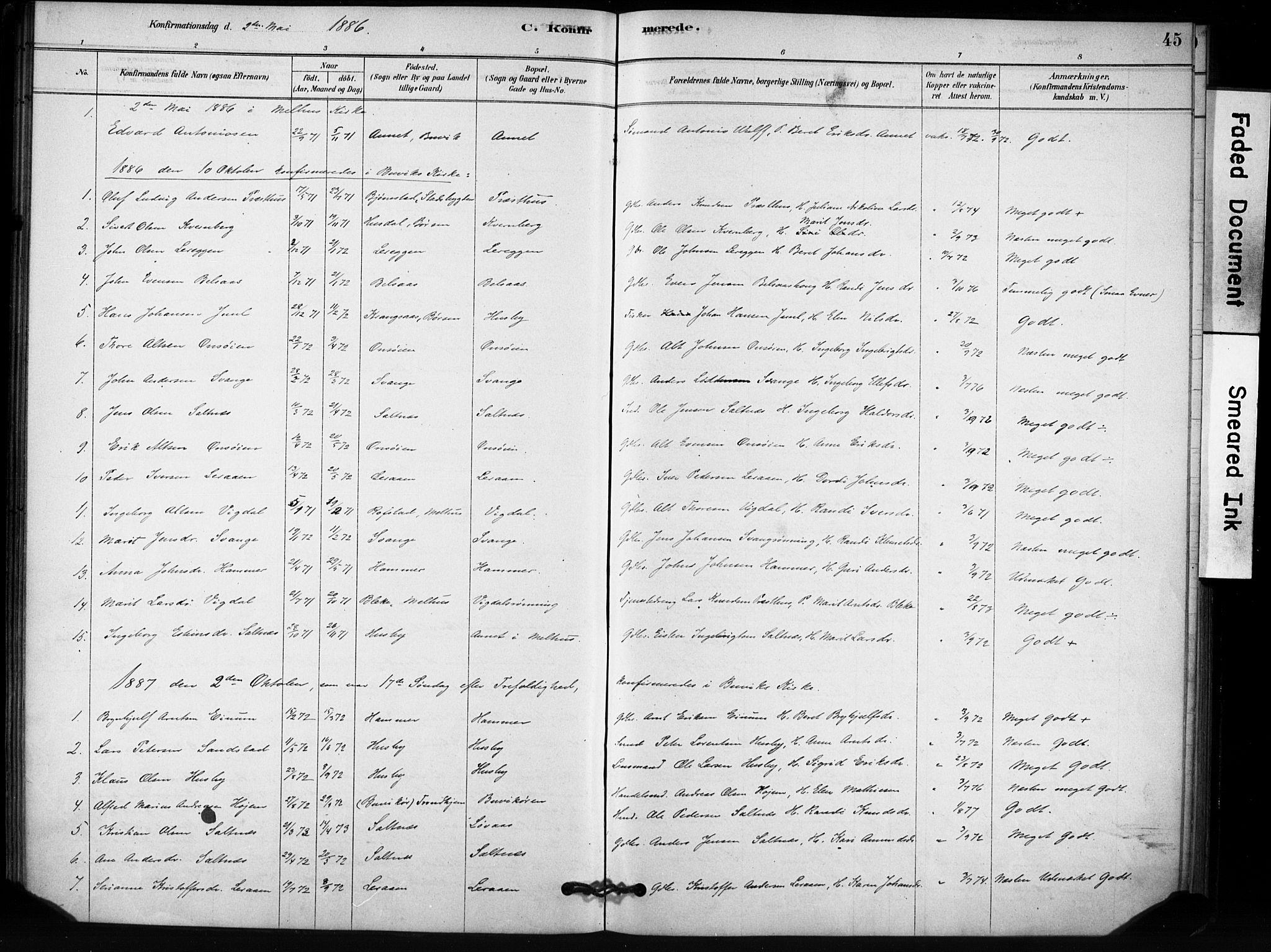 SAT, Ministerialprotokoller, klokkerbøker og fødselsregistre - Sør-Trøndelag, 666/L0786: Ministerialbok nr. 666A04, 1878-1895, s. 45