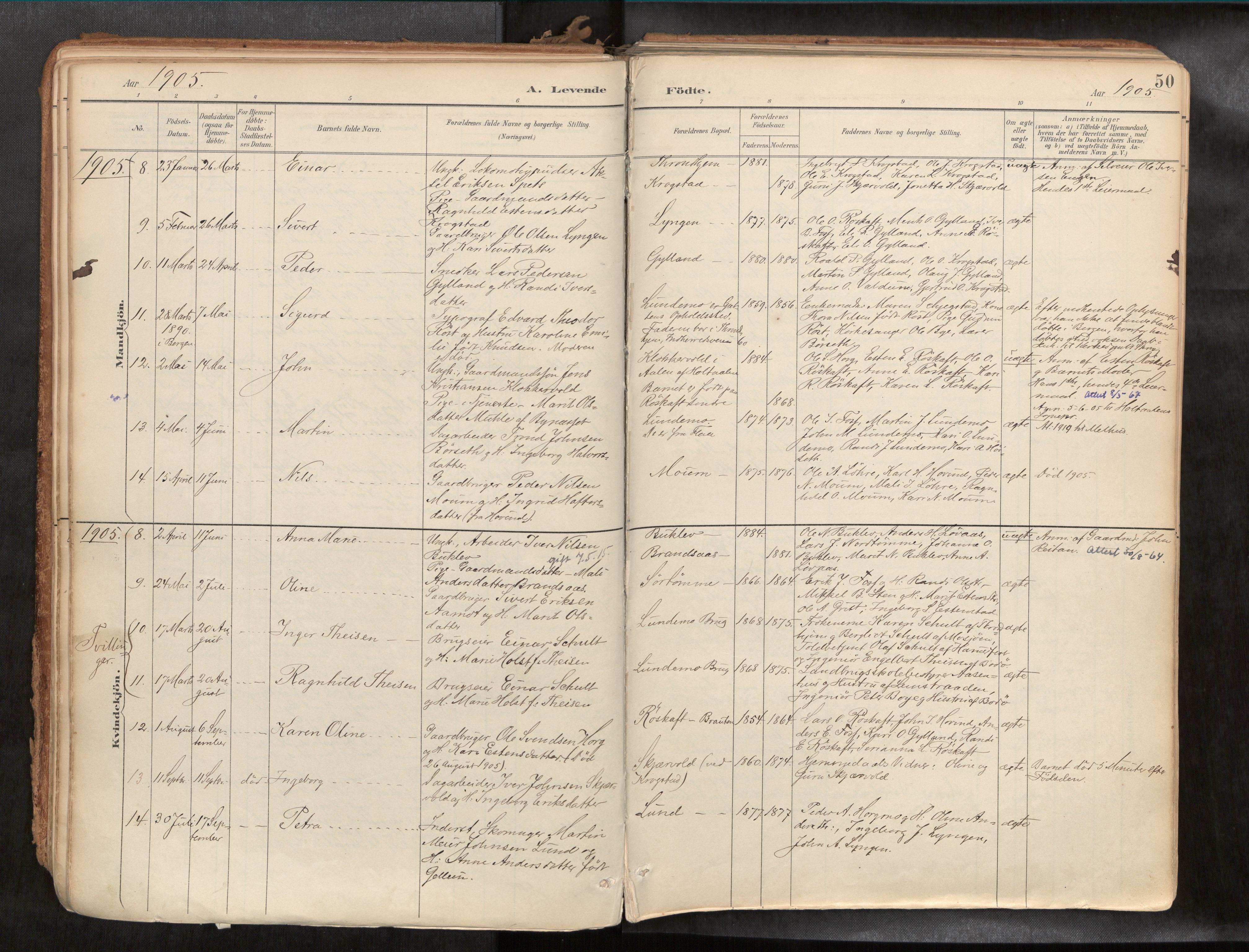 SAT, Ministerialprotokoller, klokkerbøker og fødselsregistre - Sør-Trøndelag, 692/L1105b: Ministerialbok nr. 692A06, 1891-1934, s. 50