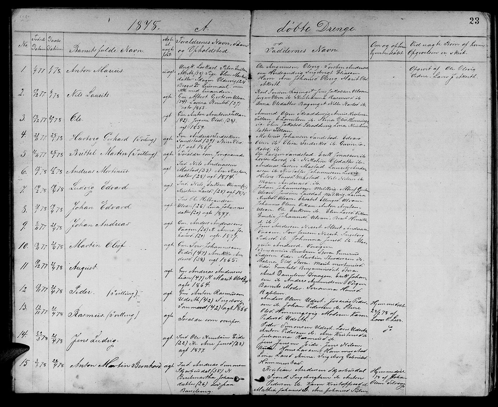 SAT, Ministerialprotokoller, klokkerbøker og fødselsregistre - Sør-Trøndelag, 637/L0561: Klokkerbok nr. 637C02, 1873-1882, s. 23