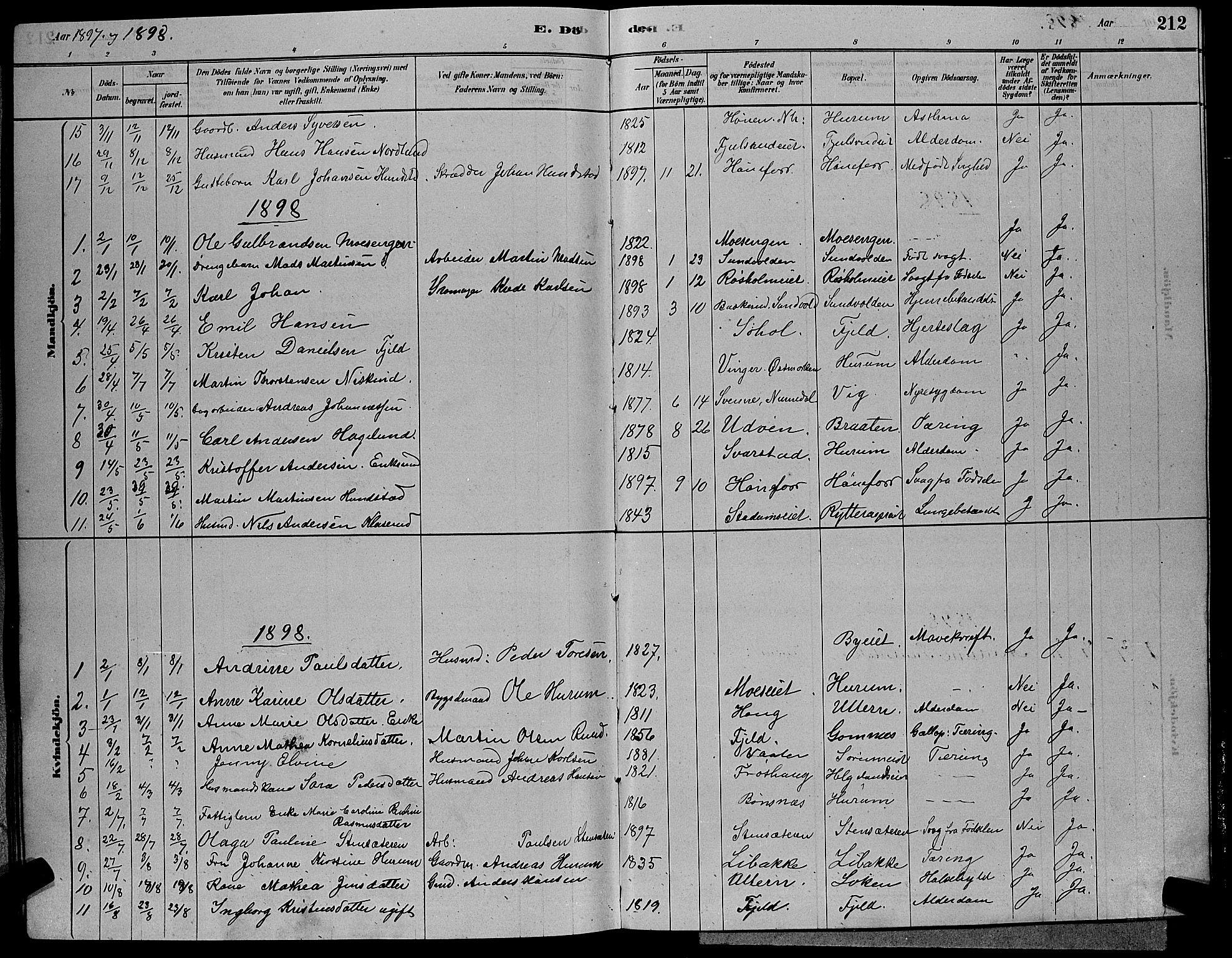 SAKO, Hole kirkebøker, G/Ga/L0003: Klokkerbok nr. I 3, 1879-1904, s. 212