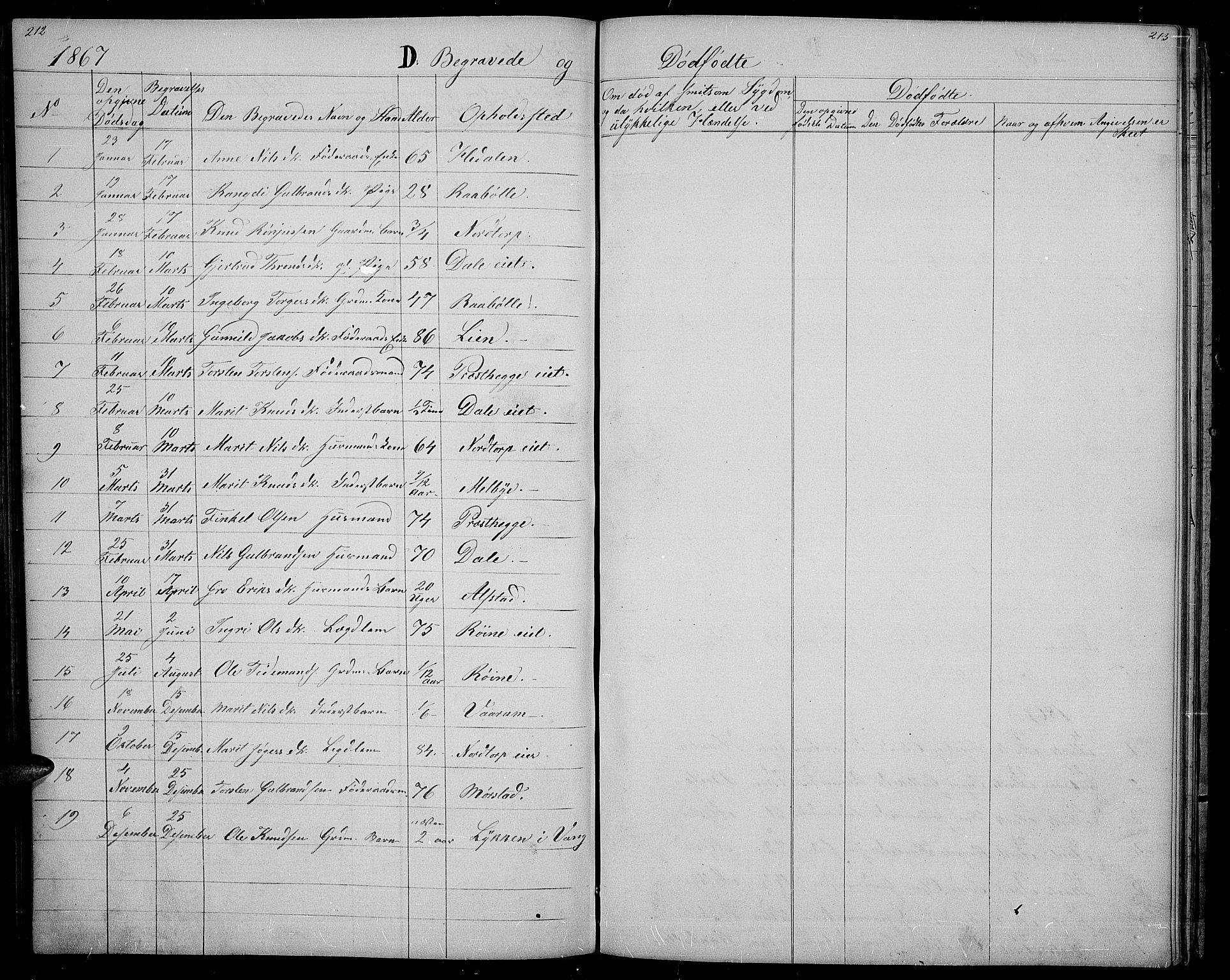 SAH, Øystre Slidre prestekontor, Klokkerbok nr. 1, 1866-1886, s. 212-213