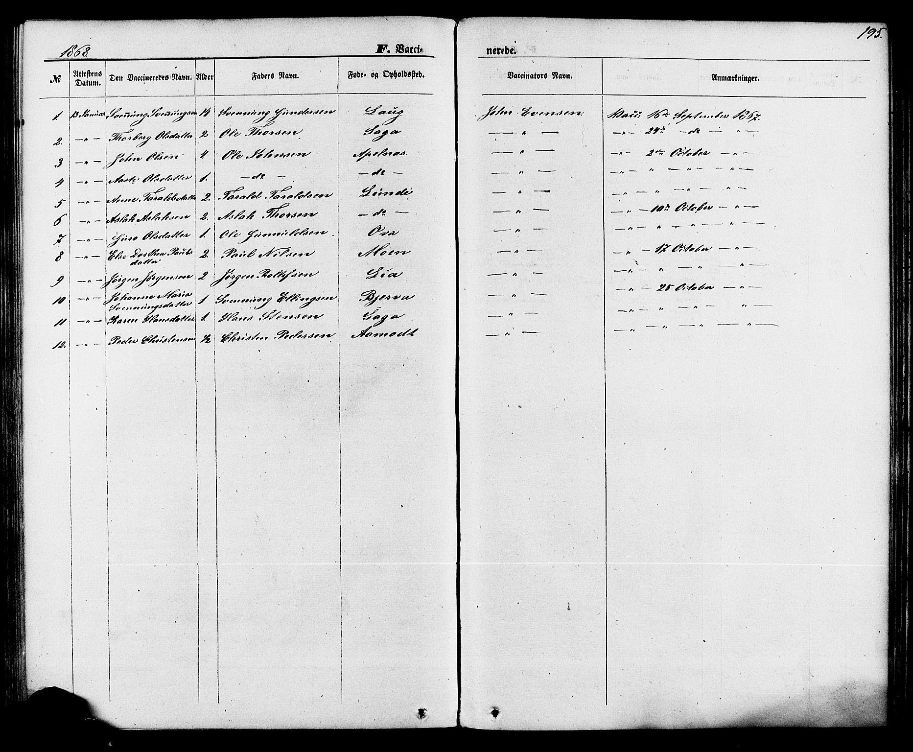 SAKO, Lunde kirkebøker, F/Fa/L0001: Ministerialbok nr. I 1, 1866-1883, s. 195